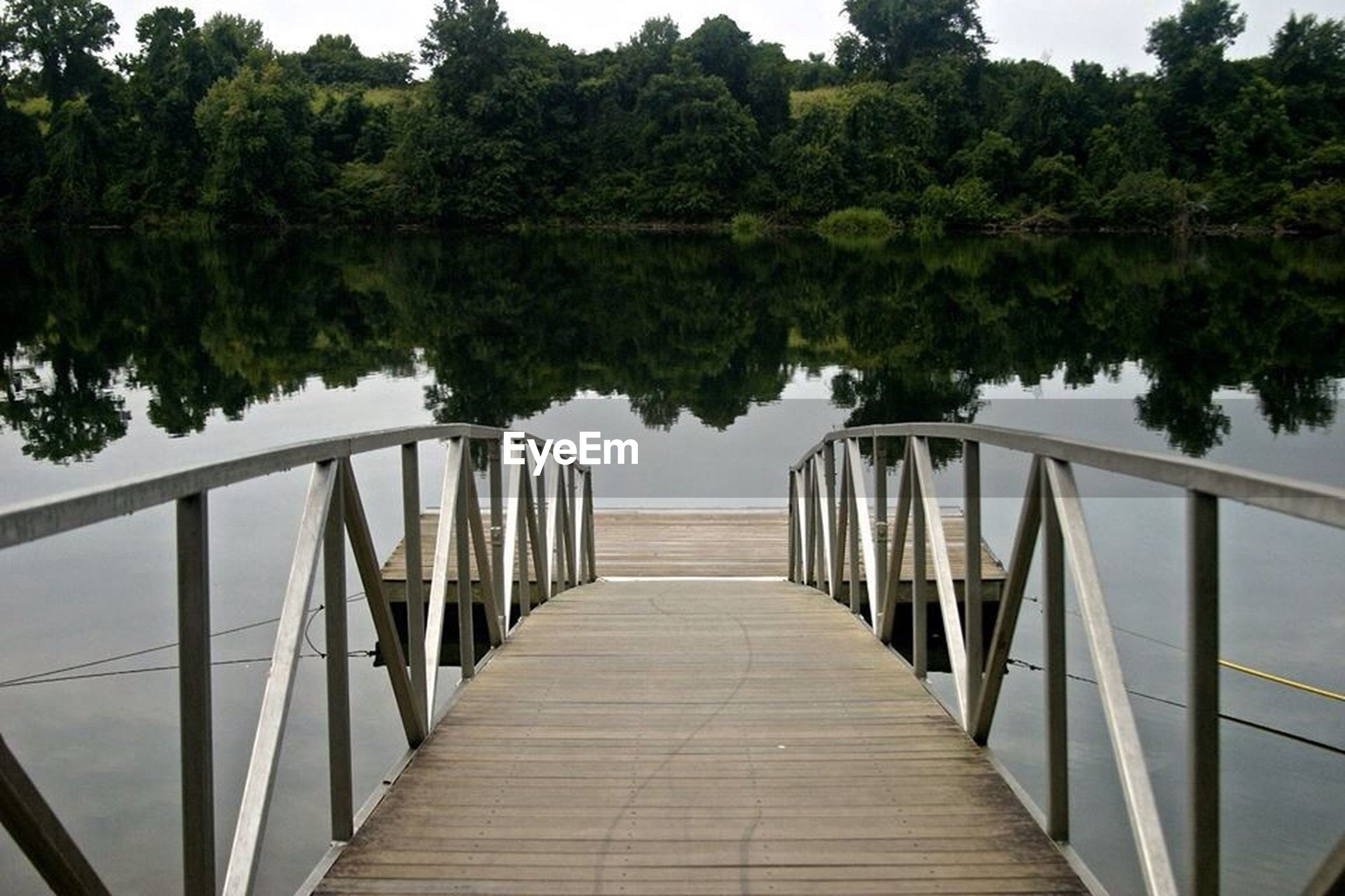 tree, the way forward, railing, water, diminishing perspective, footbridge, connection, lake, reflection, built structure, tranquility, sky, transportation, nature, bridge - man made structure, day, tranquil scene, river, vanishing point, no people