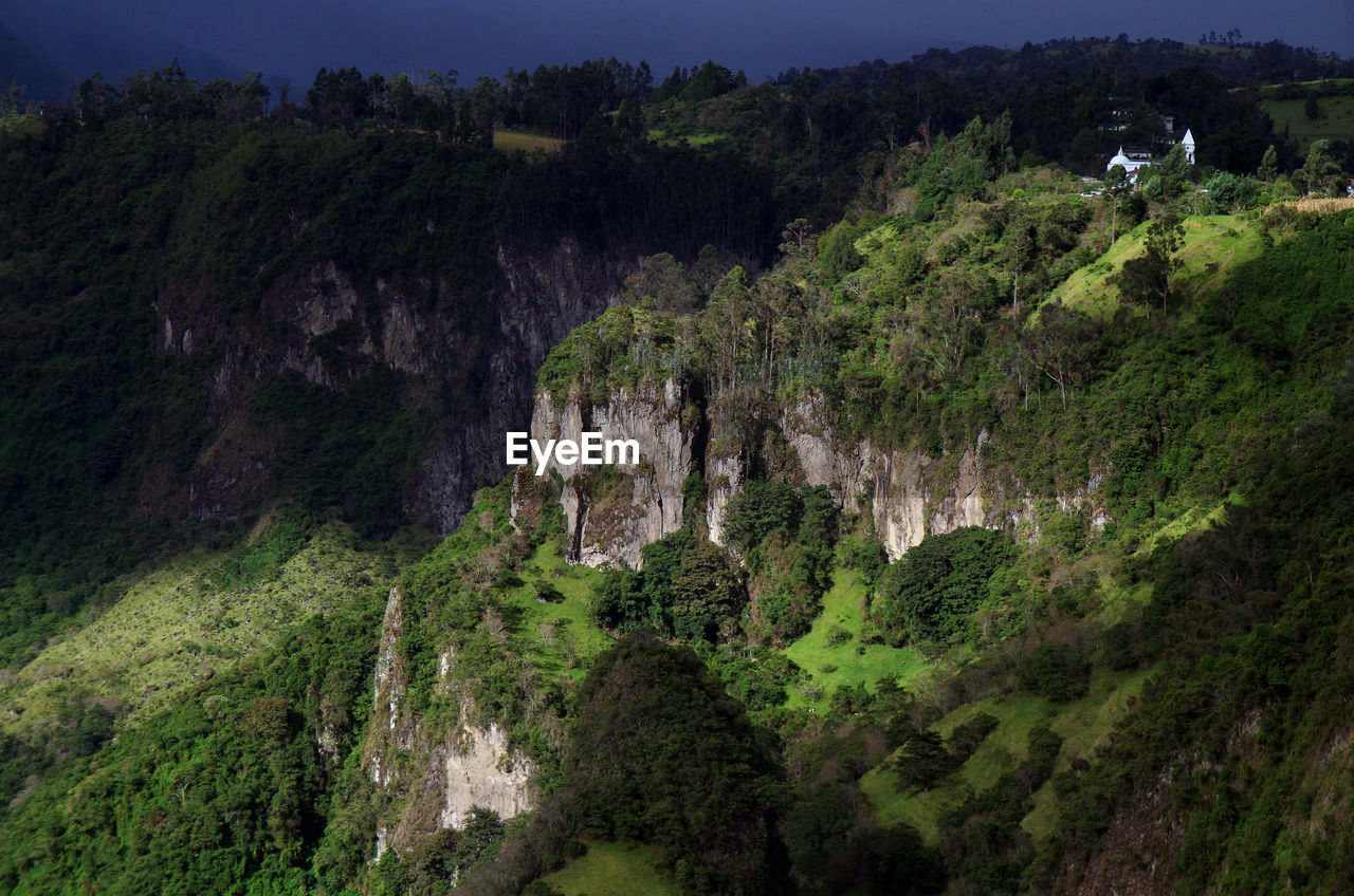 Scenic View Of Trees On Cliff
