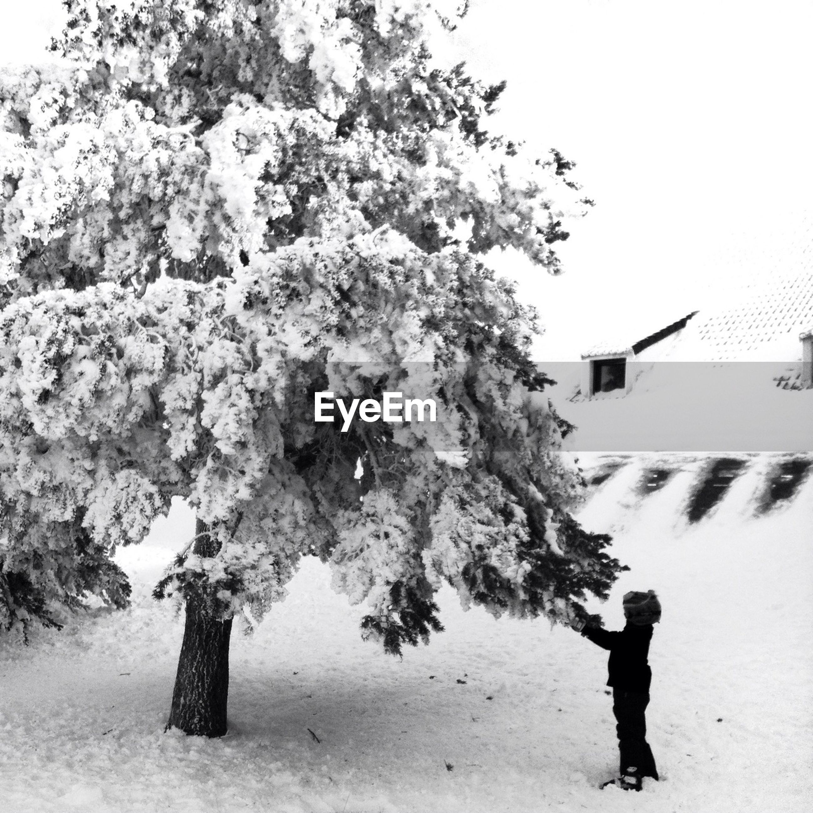 Side view of person standing by tree on snowy landscape