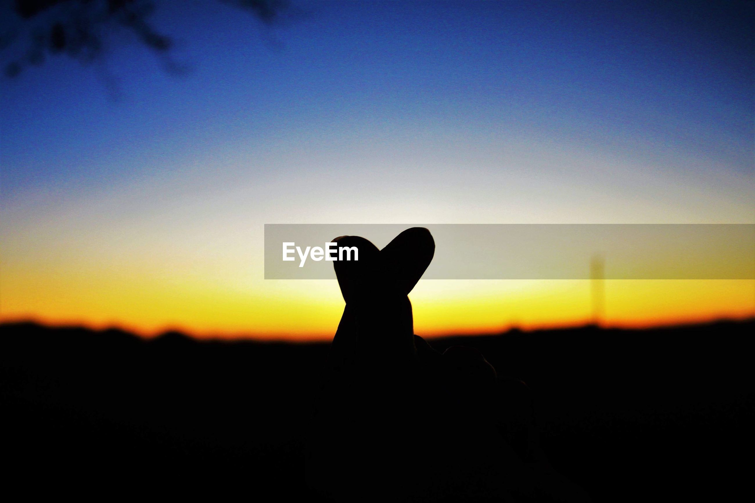 SILHOUETTE OF HAND AGAINST CLEAR SKY
