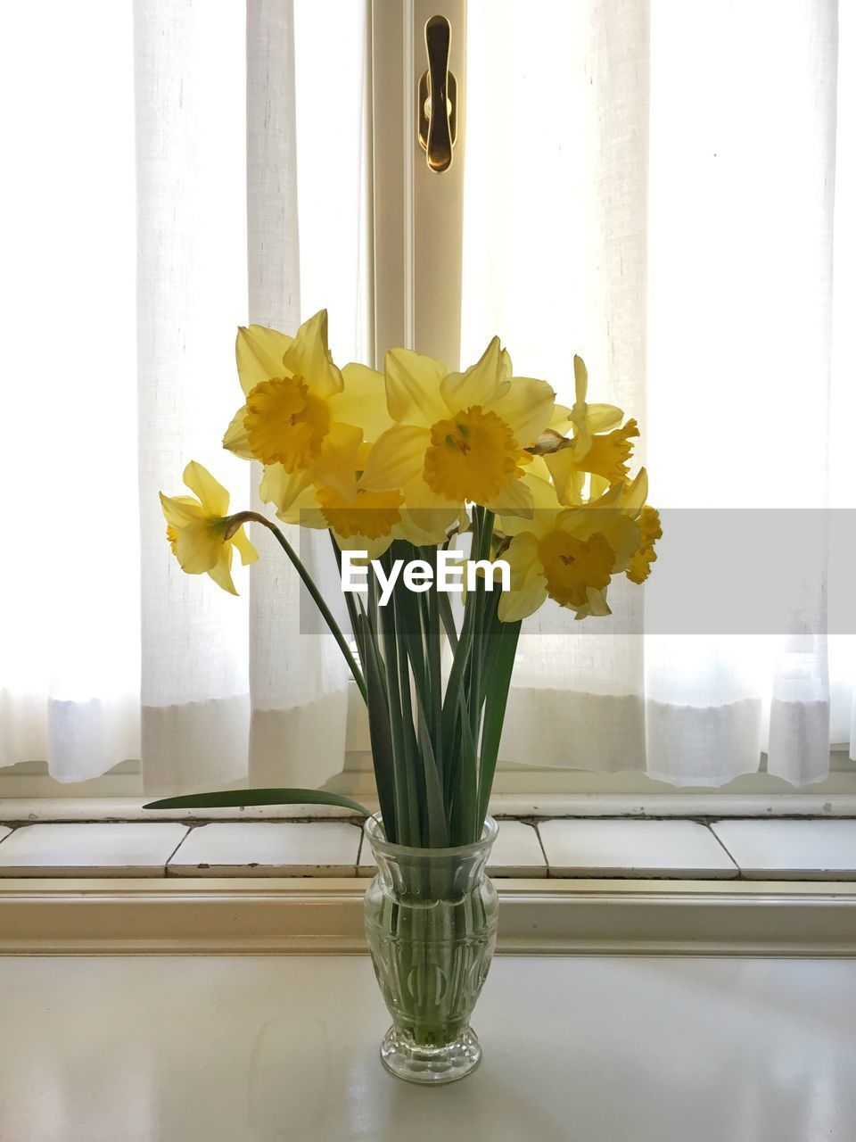 Yellow Daffodils In Vase On Window Sill