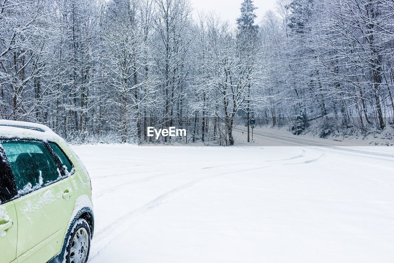 snow, transportation, mode of transportation, car, winter, motor vehicle, cold temperature, land vehicle, road, tree, plant, no people, nature, day, tranquil scene, white color, the way forward, direction, tranquility, extreme weather, snowing, road trip, blizzard