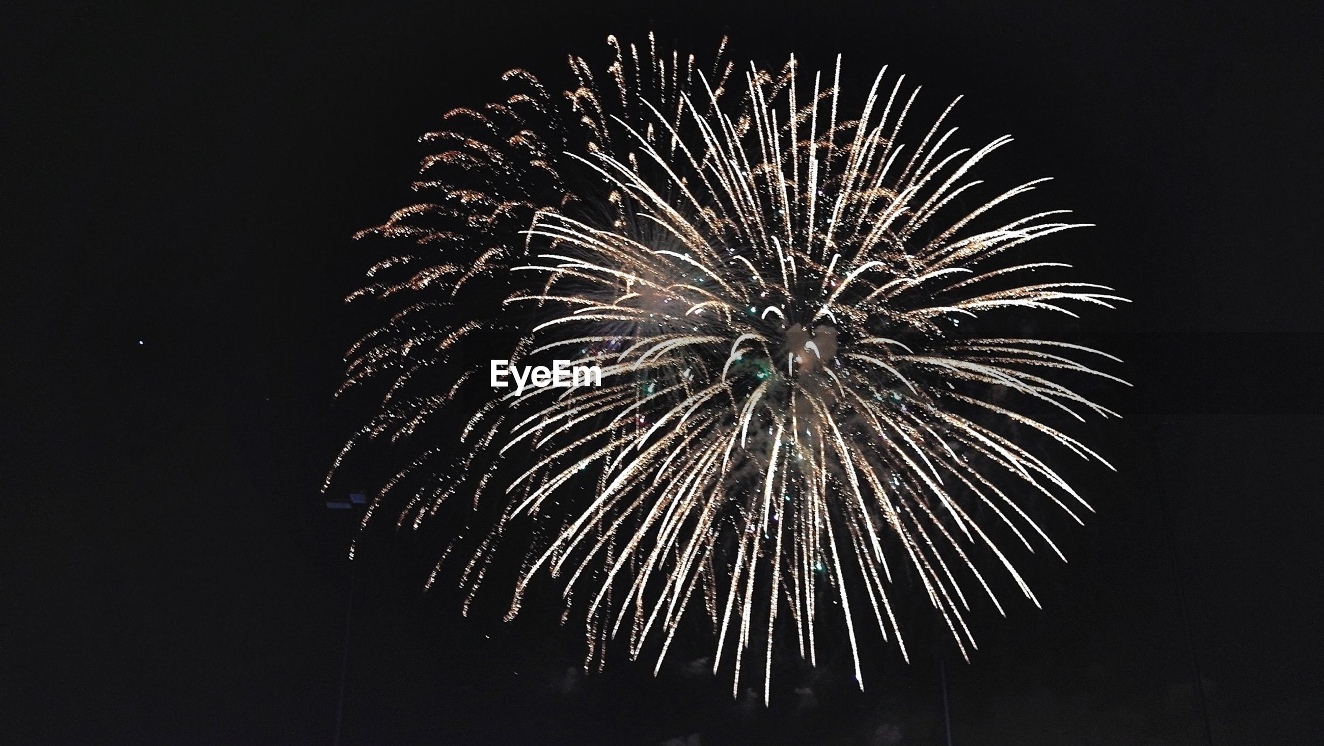 Firework display in clear sky during night