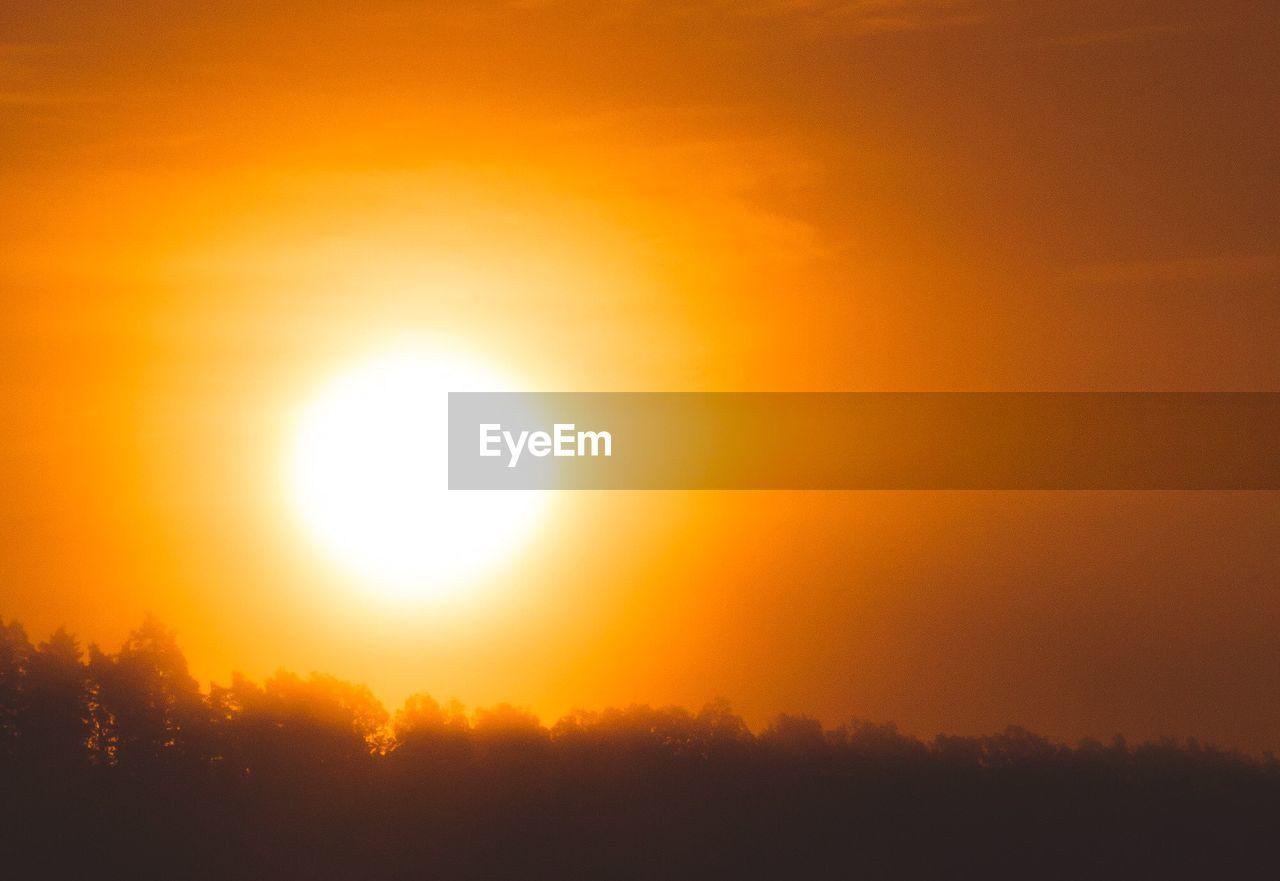 Silhouette Trees Against Bright Sun In Orange Sky