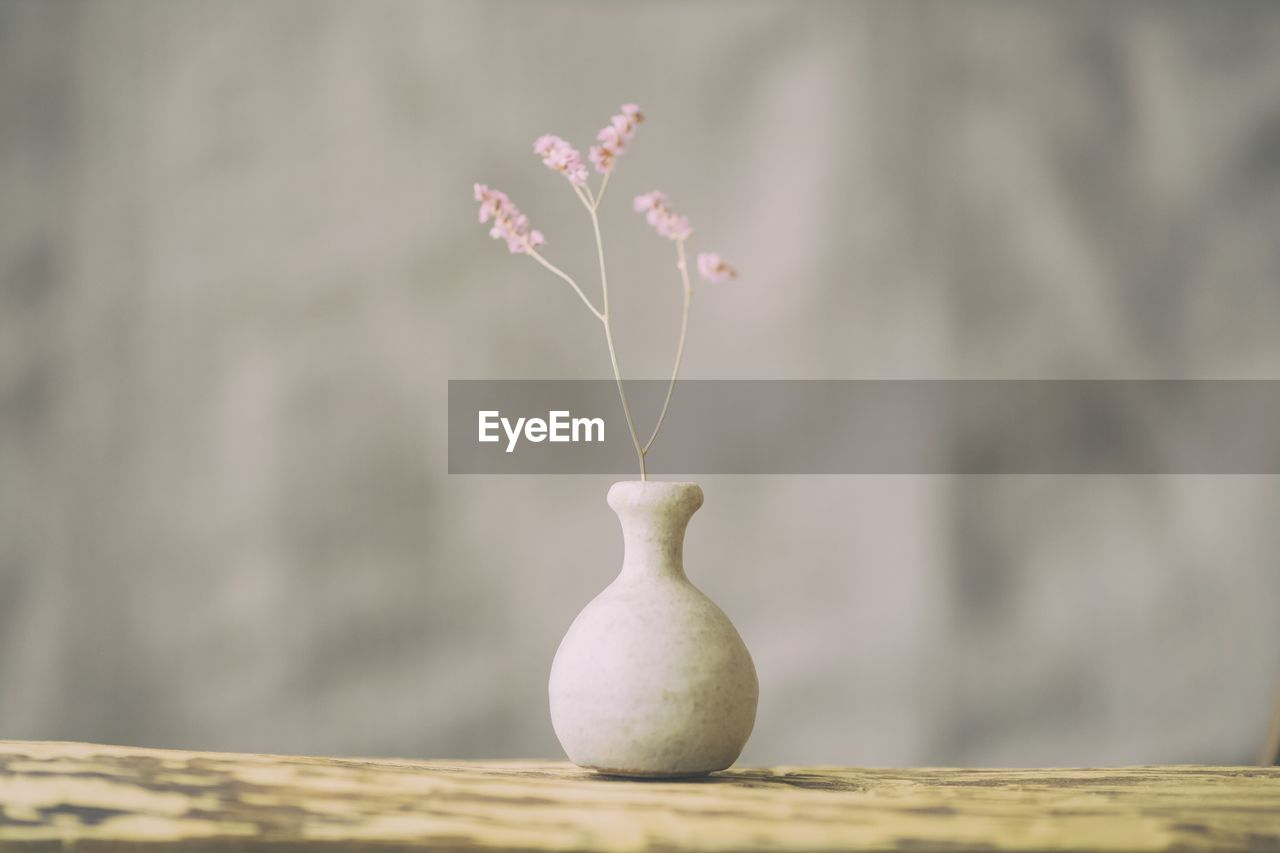 focus on foreground, close-up, no people, plant, wood - material, flower, freshness, day, flowering plant, selective focus, outdoors, food, food and drink, nature, healthy eating, table, still life, fragility, fruit, beauty in nature