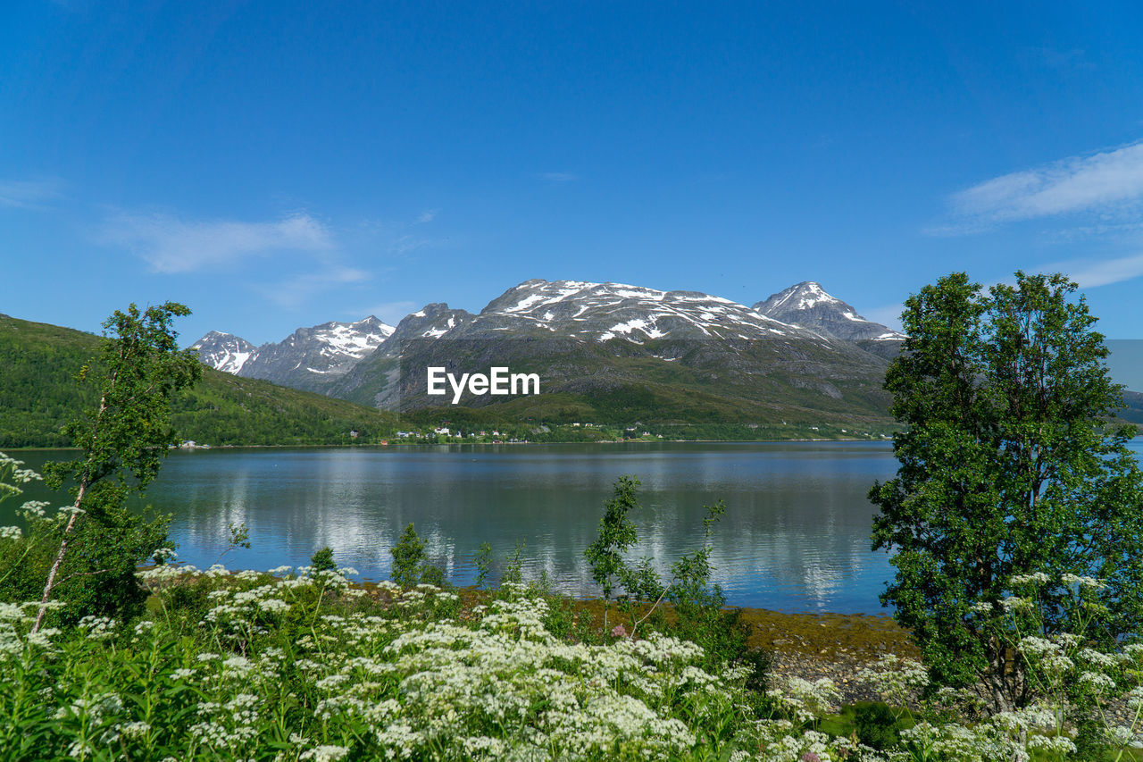 mountain, water, beauty in nature, sky, scenics - nature, tranquil scene, lake, tranquility, plant, nature, non-urban scene, day, growth, tree, cloud - sky, no people, idyllic, reflection, environment, outdoors, mountain peak