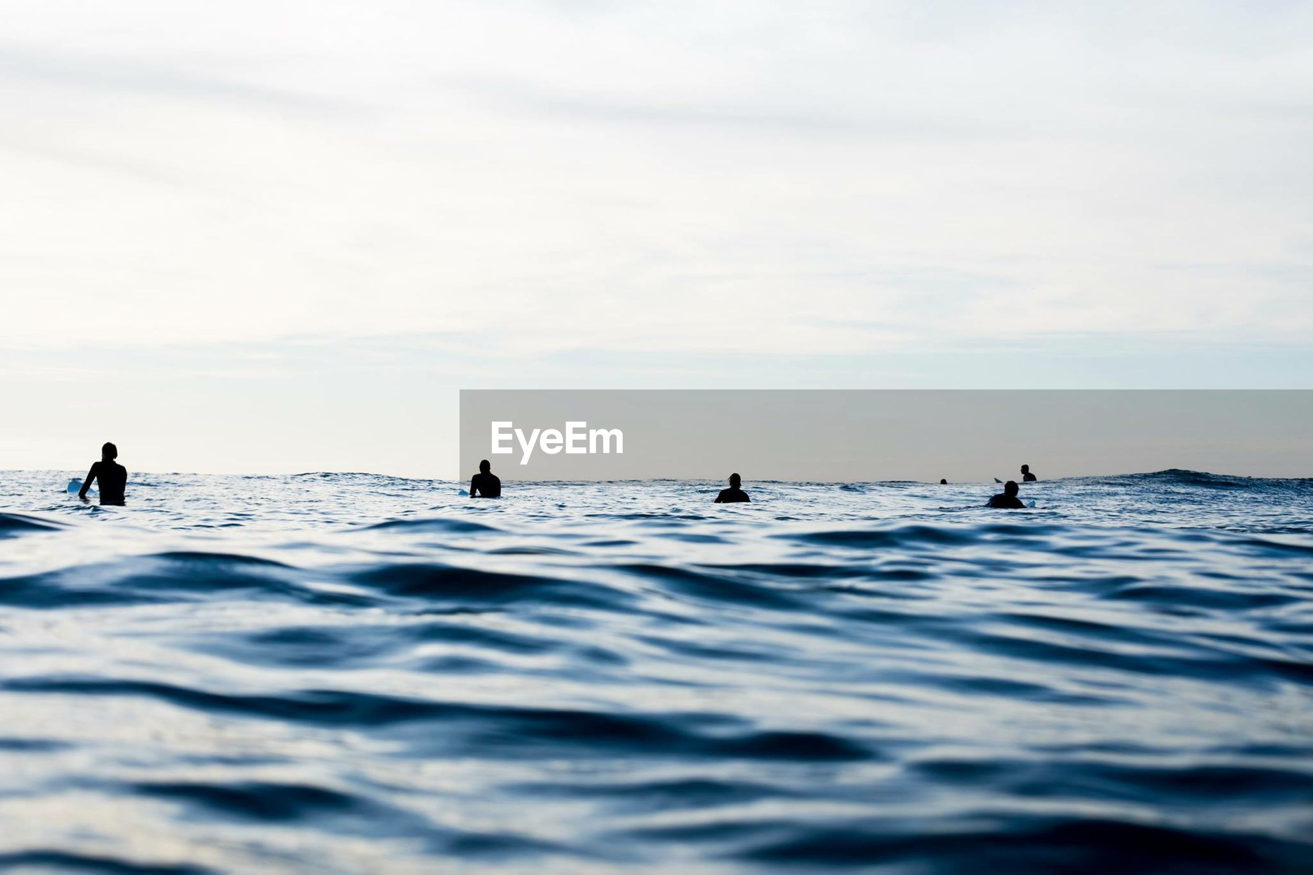 Silhouette of men surfing in sea