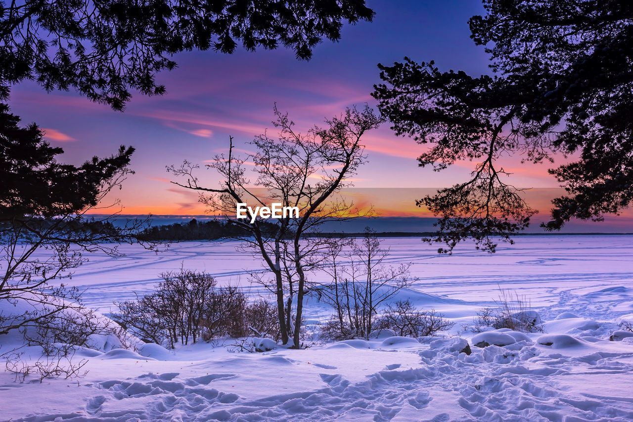 winter, cold temperature, snow, sky, sunset, beauty in nature, tree, scenics - nature, tranquil scene, tranquility, cloud - sky, plant, covering, no people, water, nature, frozen, non-urban scene, orange color, outdoors