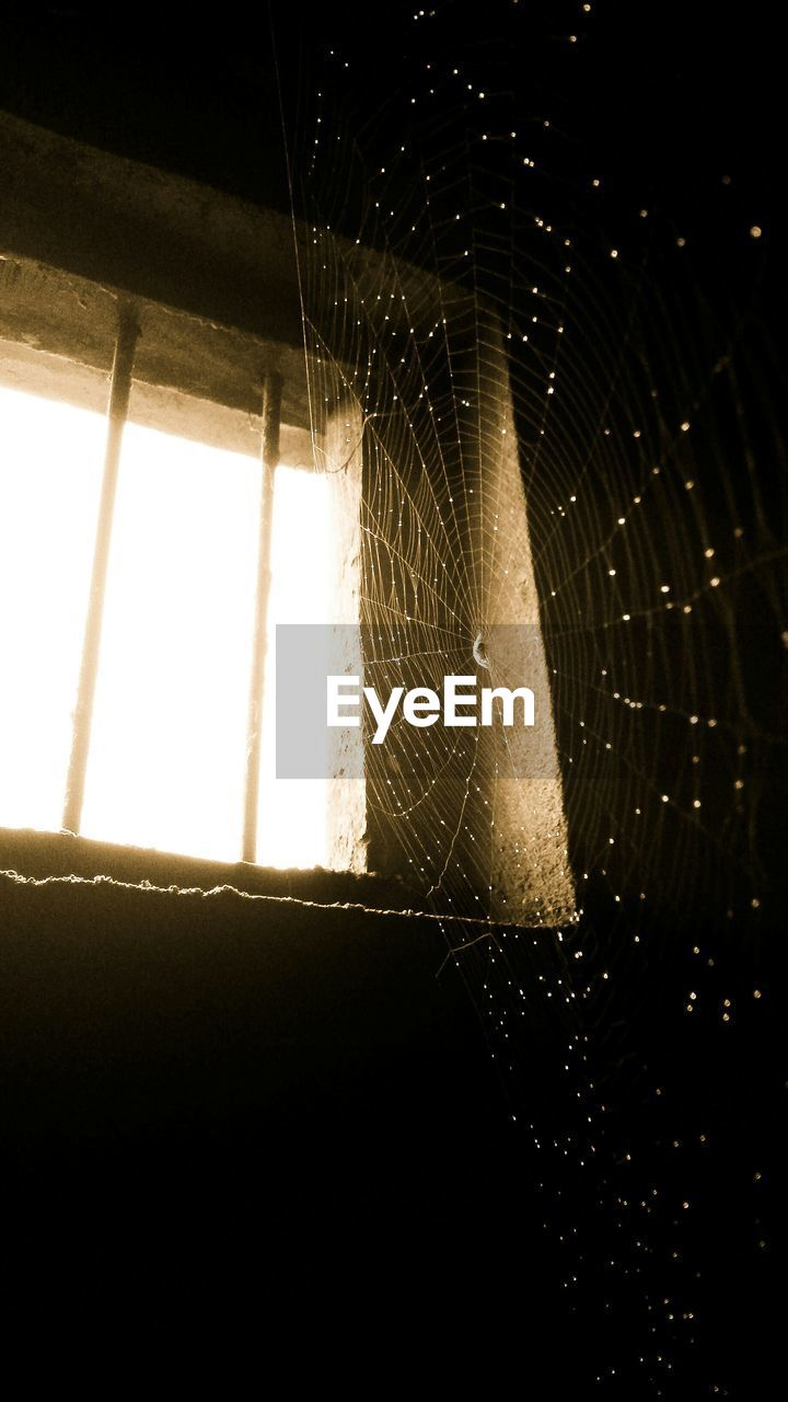 Close-Up Of Wet Spider Web By Window