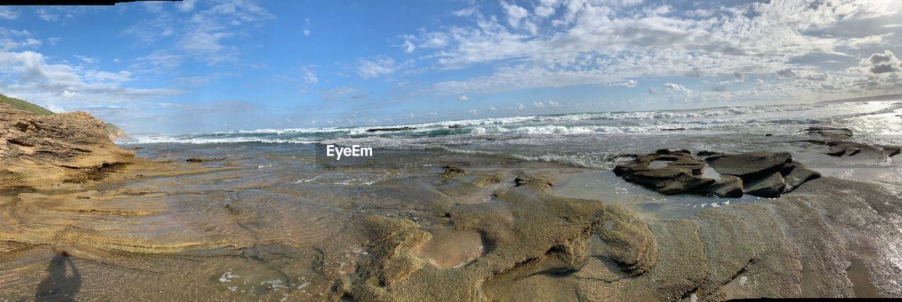 water, sea, sky, beach, animal themes, land, one animal, animal, nature, rock, beauty in nature, no people, day, solid, cloud - sky, rock - object, scenics - nature, animal wildlife, mammal, outdoors, marine