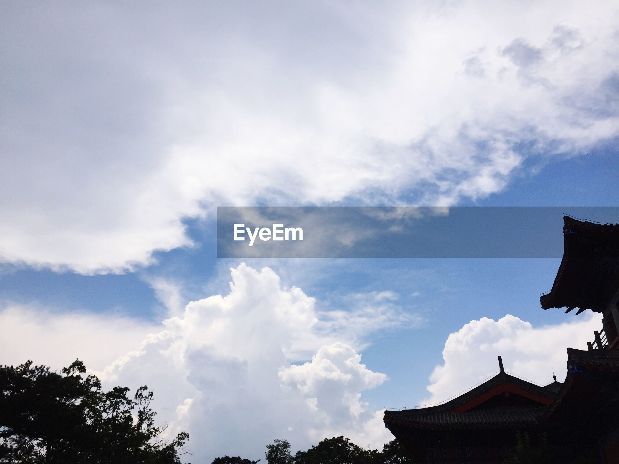 cloud - sky, sky, tree, low angle view, nature, beauty in nature, no people, outdoors, day, architecture