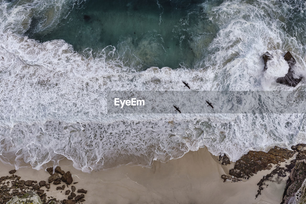 Aerial View Of Three Birds Flying Over Wavy Sea