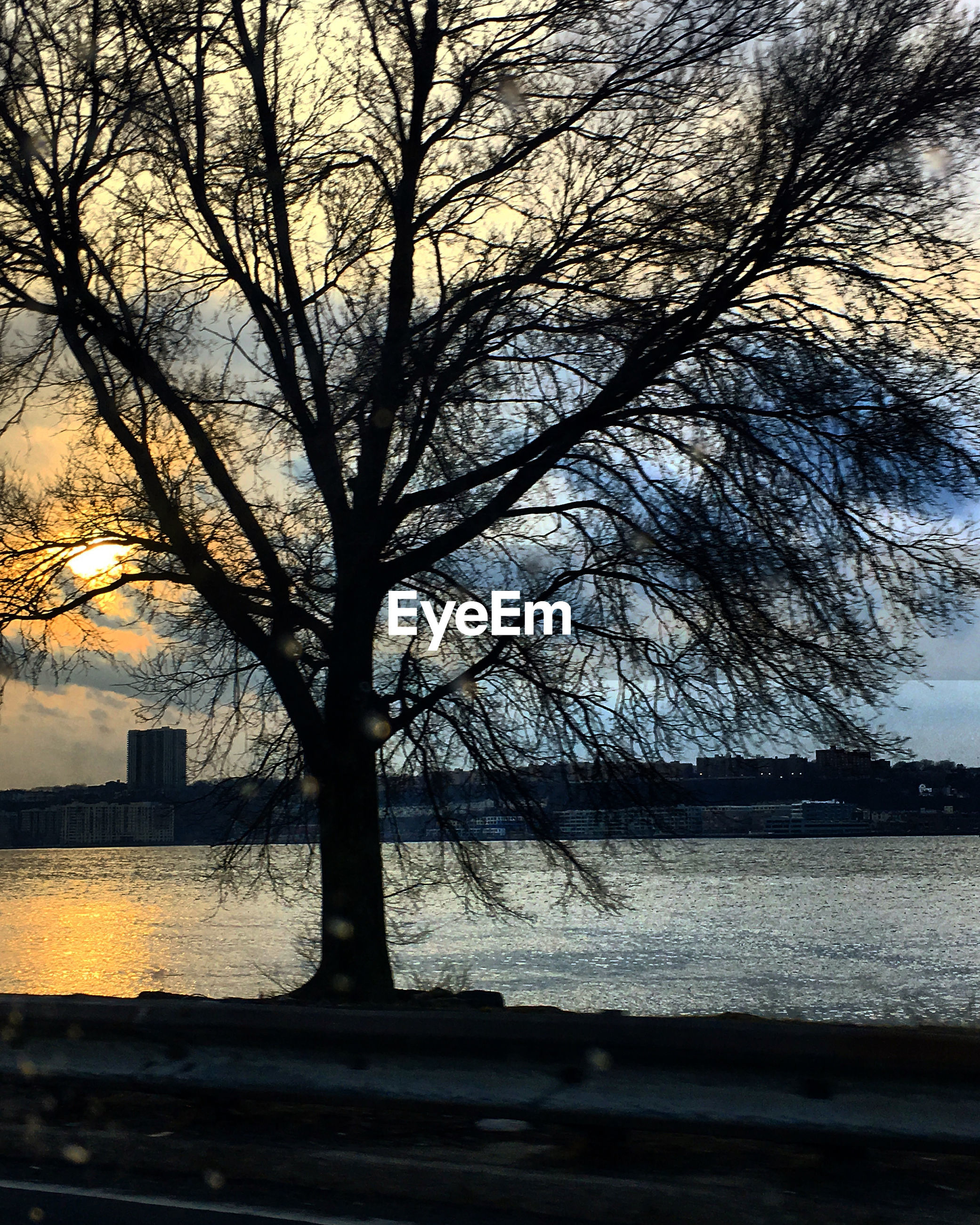 tree, river, bare tree, water, nature, no people, branch, outdoors, sky, sunset, built structure, architecture, scenics, silhouette, beauty in nature, day, building exterior, city