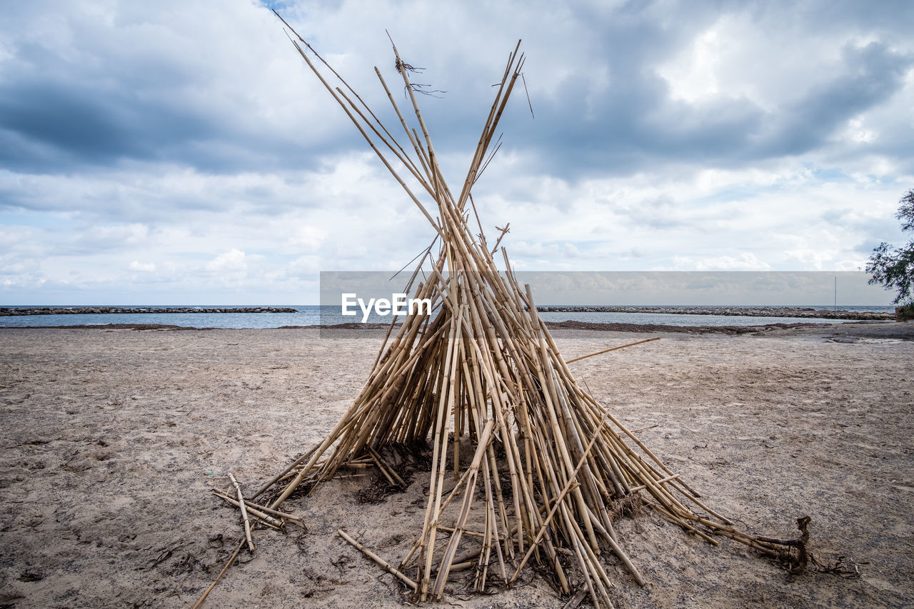 cloud - sky, sky, land, water, nature, beach, sea, day, no people, sand, tranquility, tranquil scene, beauty in nature, wood - material, scenics - nature, outdoors, plant, non-urban scene, wood, driftwood
