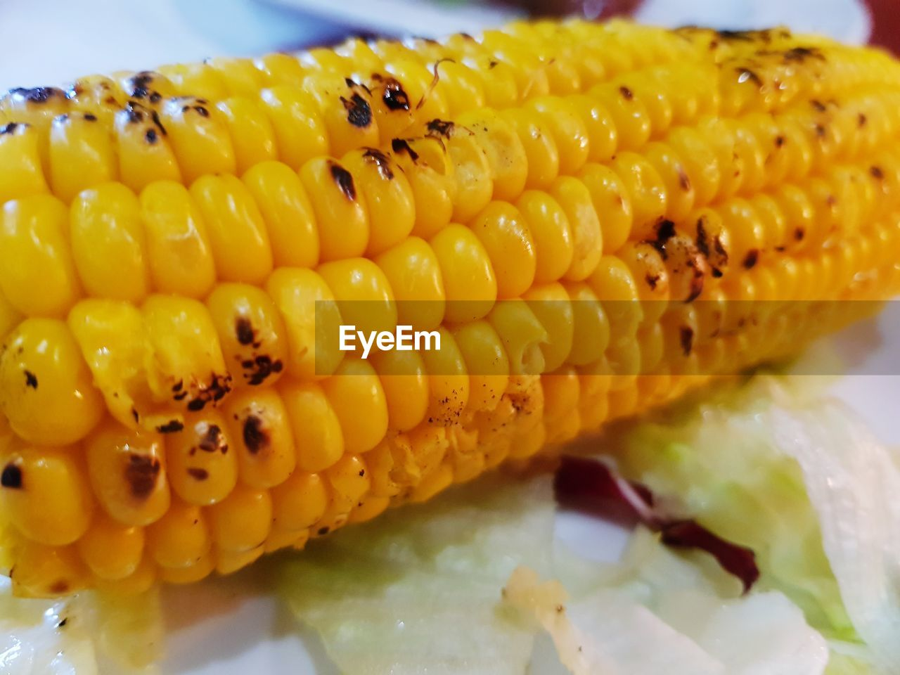 food and drink, food, corn, close-up, corn on the cob, freshness, yellow, no people, indoors, indulgence, healthy eating, ready-to-eat, sweet food, day