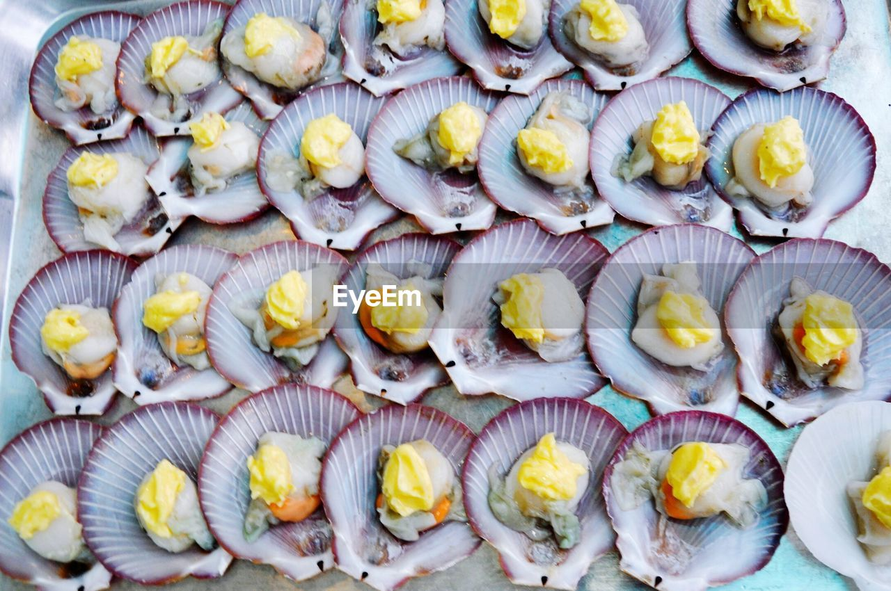 food and drink, food, freshness, wellbeing, healthy eating, large group of objects, no people, high angle view, full frame, in a row, retail, close-up, directly above, abundance, seafood, still life, order, arrangement, day, repetition