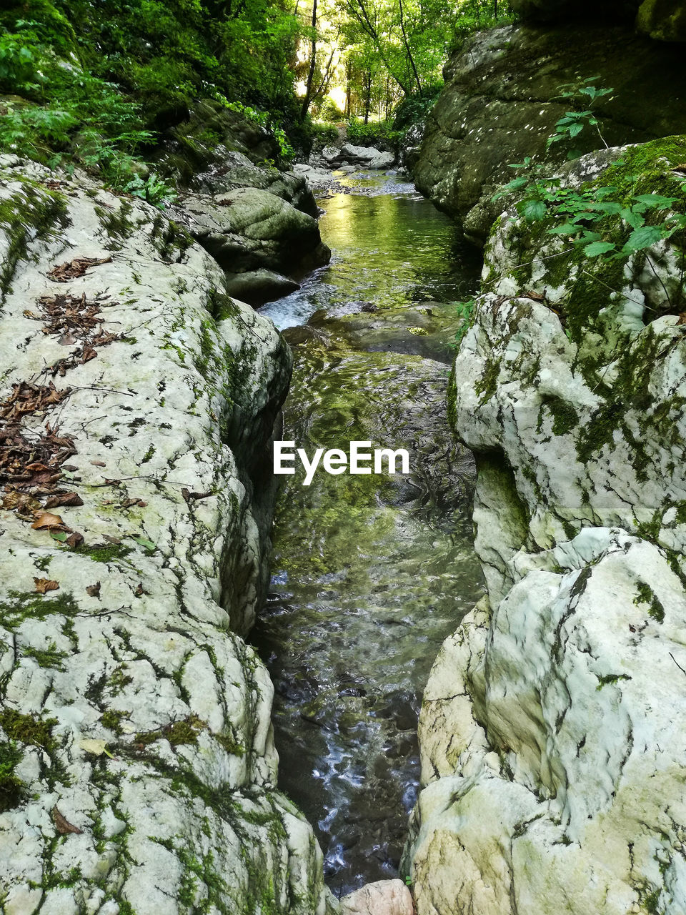 Gorge Green Color Klamm Natural Beauty Wonders Of Nature Beauty In Nature Flowing Flowing Water Forest Geology Landscape Nature No People Outdoors Ravine River Rocks Scenics - Nature Stream - Flowing Water Water