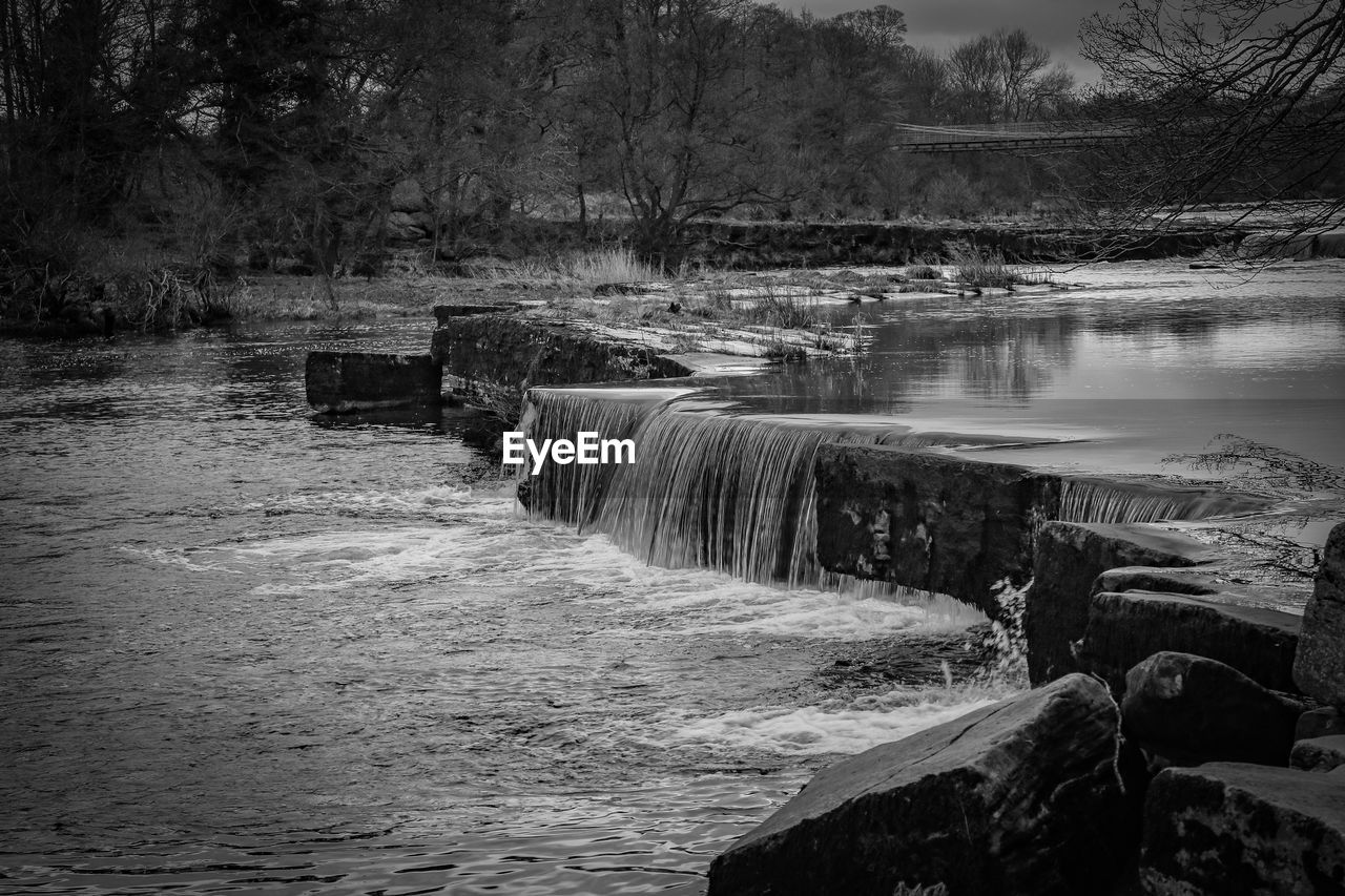 water, tree, motion, flowing water, scenics - nature, beauty in nature, nature, flowing, plant, river, no people, long exposure, waterfall, day, forest, non-urban scene, waterfront, land, outdoors, power in nature