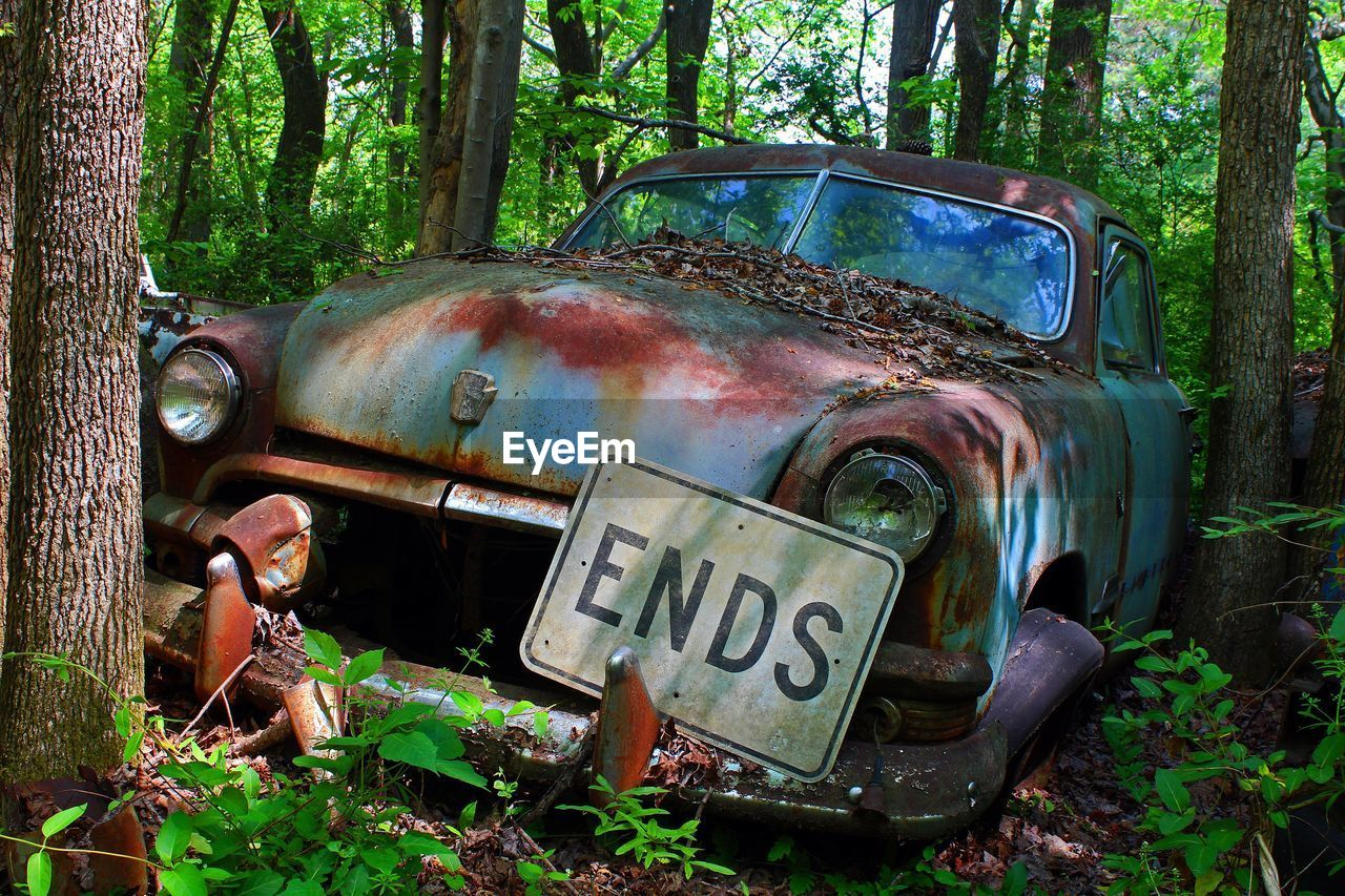 abandoned, mode of transportation, car, land vehicle, rusty, tree, land, motor vehicle, forest, metal, plant, deterioration, obsolete, old, damaged, day, decline, transportation, nature, run-down, no people, outdoors, ruined
