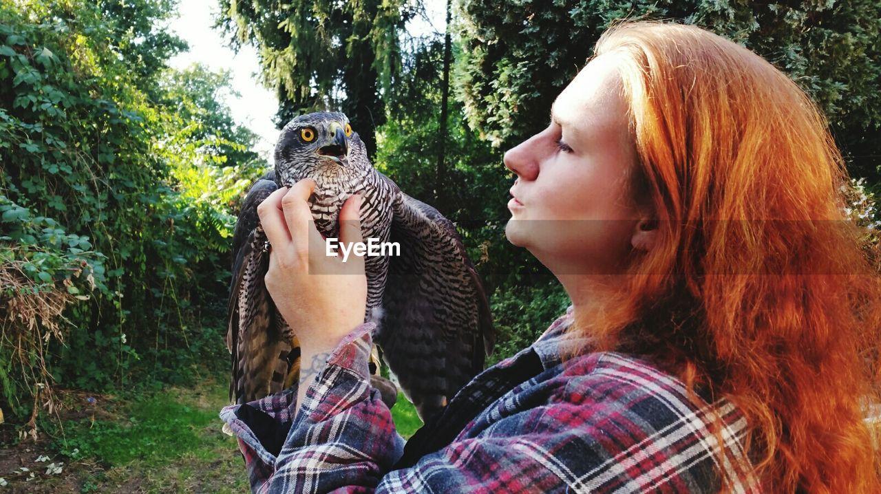Woman stroking hawk