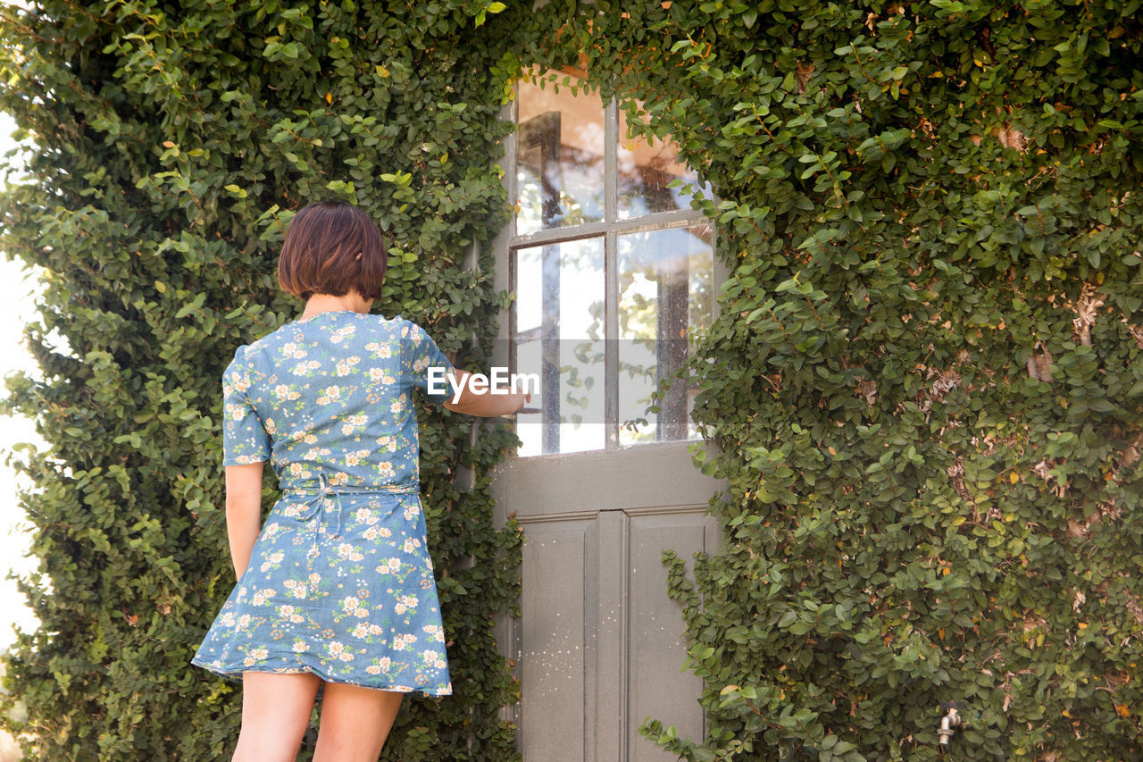 rear view, one person, standing, plant, tree, day, nature, three quarter length, casual clothing, childhood, adult, clothing, offspring, dress, young adult, child, women, outdoors, hairstyle, floral pattern