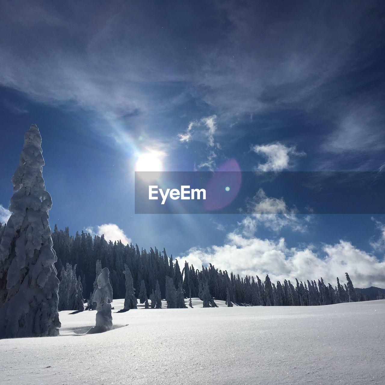 Sun shining over snowcapped landscape against sky