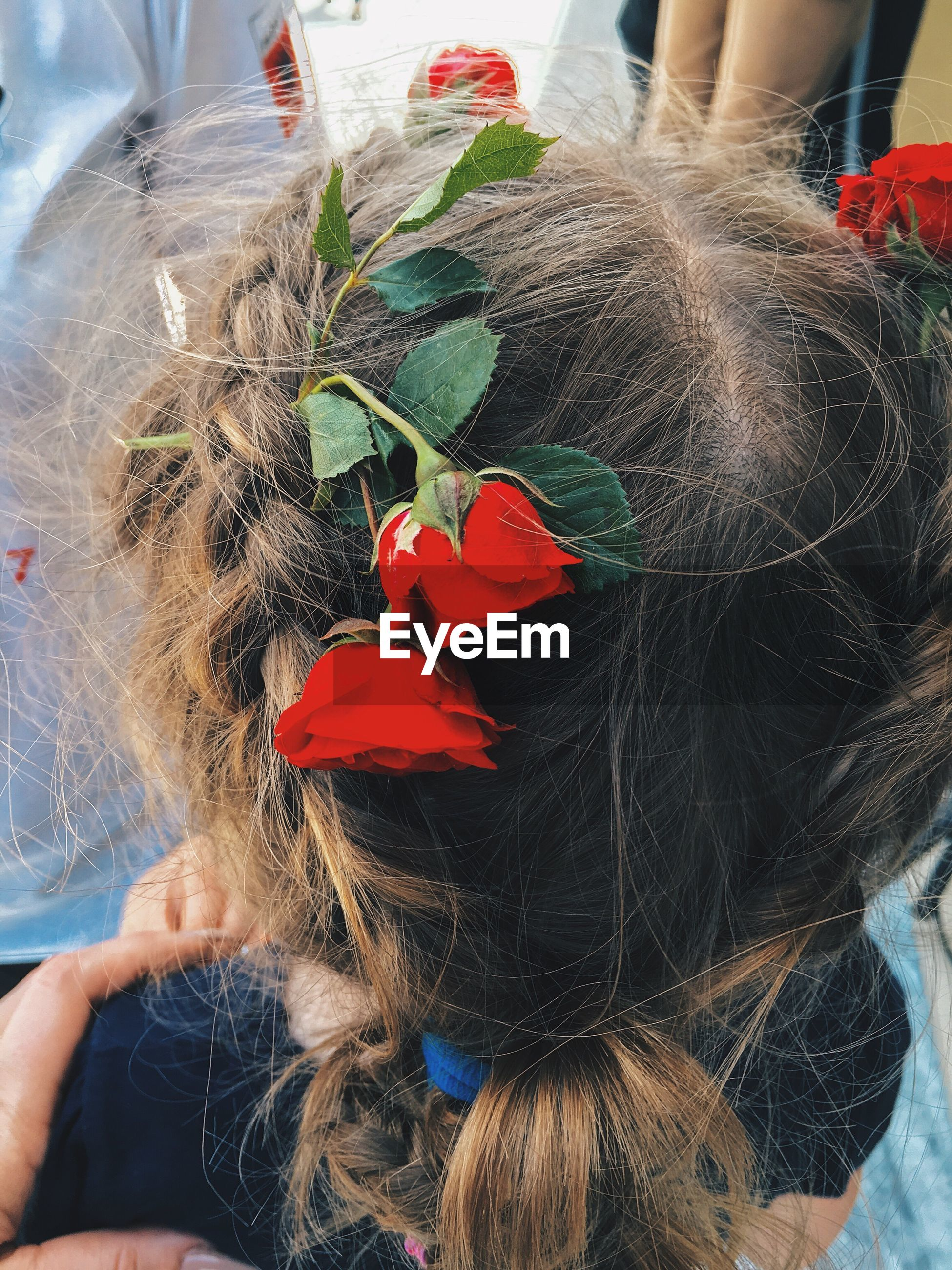 Close-up of girl wearing red roses in hair