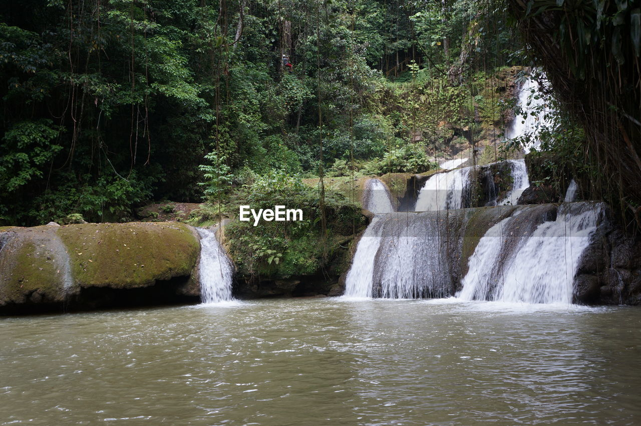 Low angle view of waterfall at river against trees
