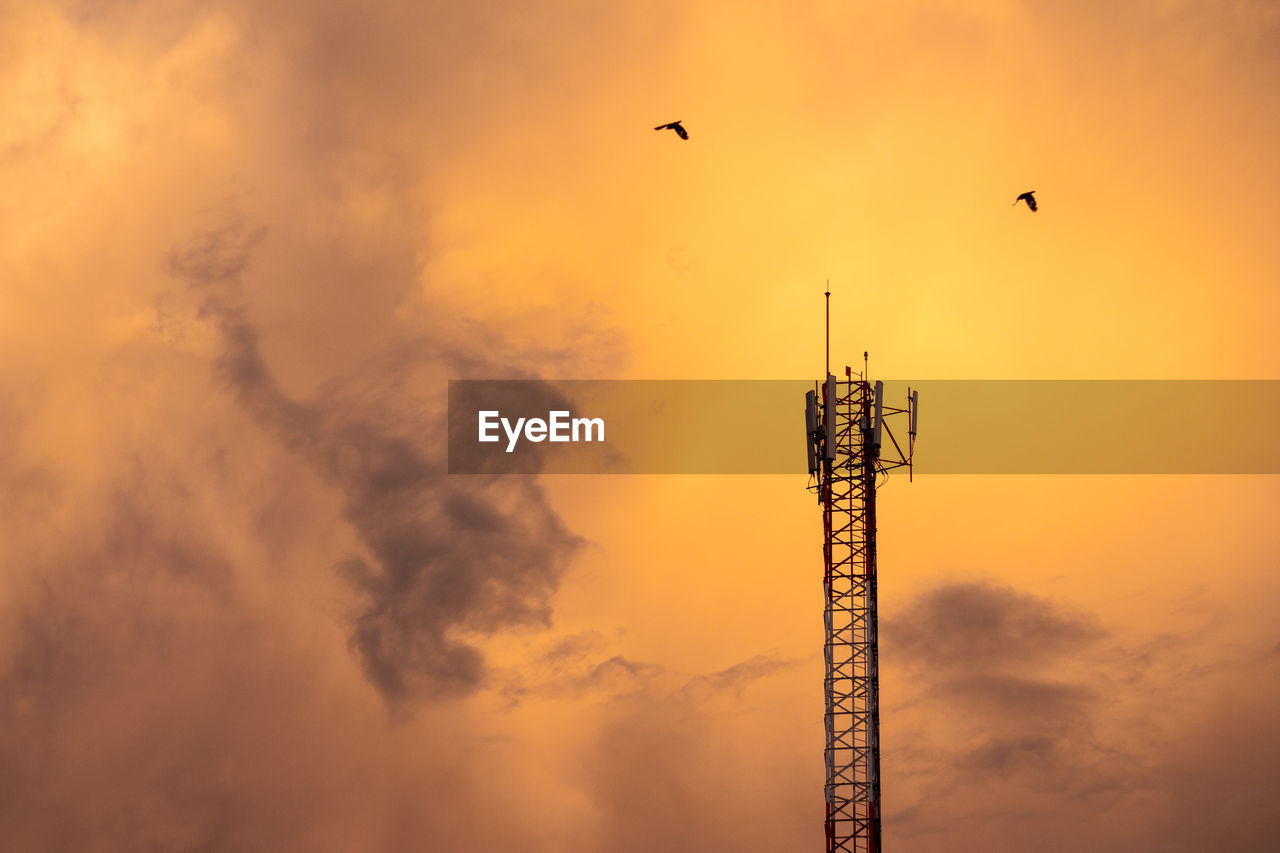 sky, vertebrate, bird, sunset, technology, cloud - sky, animal, animal themes, connection, tower, orange color, animals in the wild, no people, communication, architecture, built structure, animal wildlife, nature, low angle view, wireless technology, tall - high, outdoors, global communications