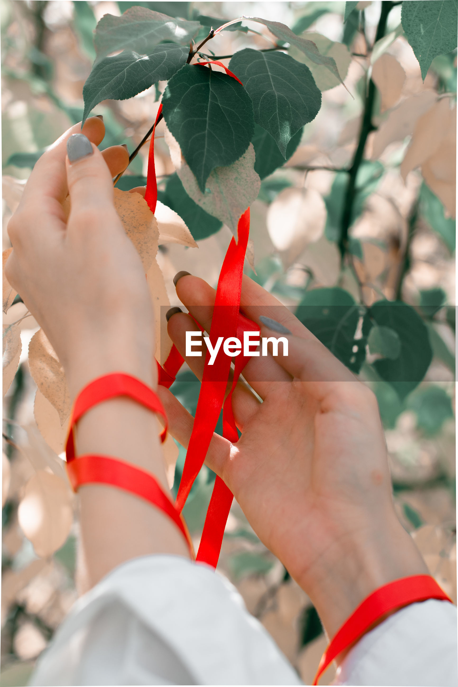 CLOSE-UP OF HUMAN HAND HOLDING PLANT