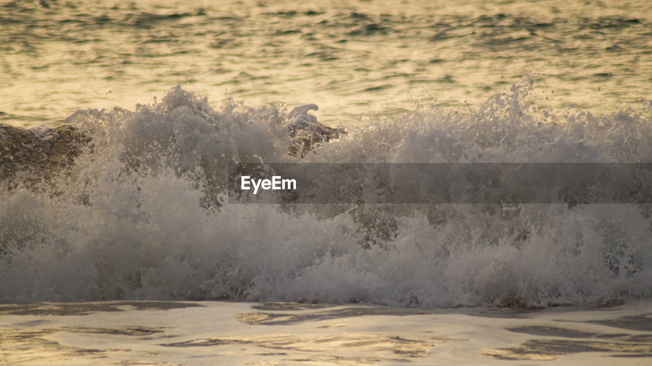 motion, water, sea, wave, nature, no people, power in nature, power, beauty in nature, land, day, beach, sport, splashing, scenics - nature, outdoors, waterfront, aquatic sport, breaking