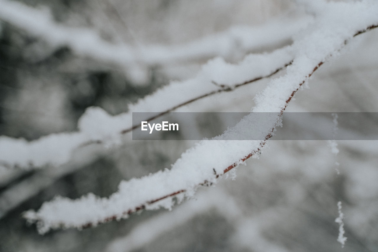 AERIAL VIEW OF FROZEN PLANT