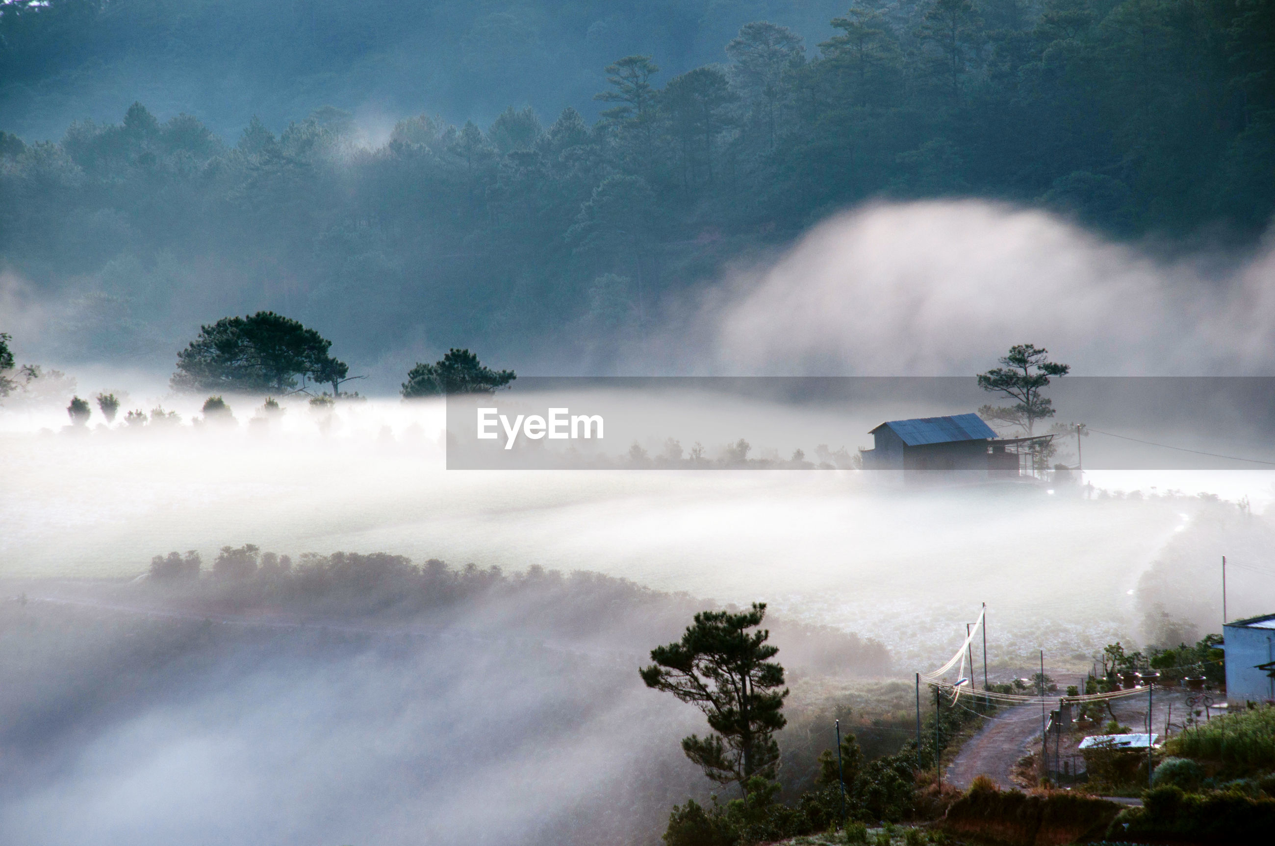 Scenic view of foggy landscape