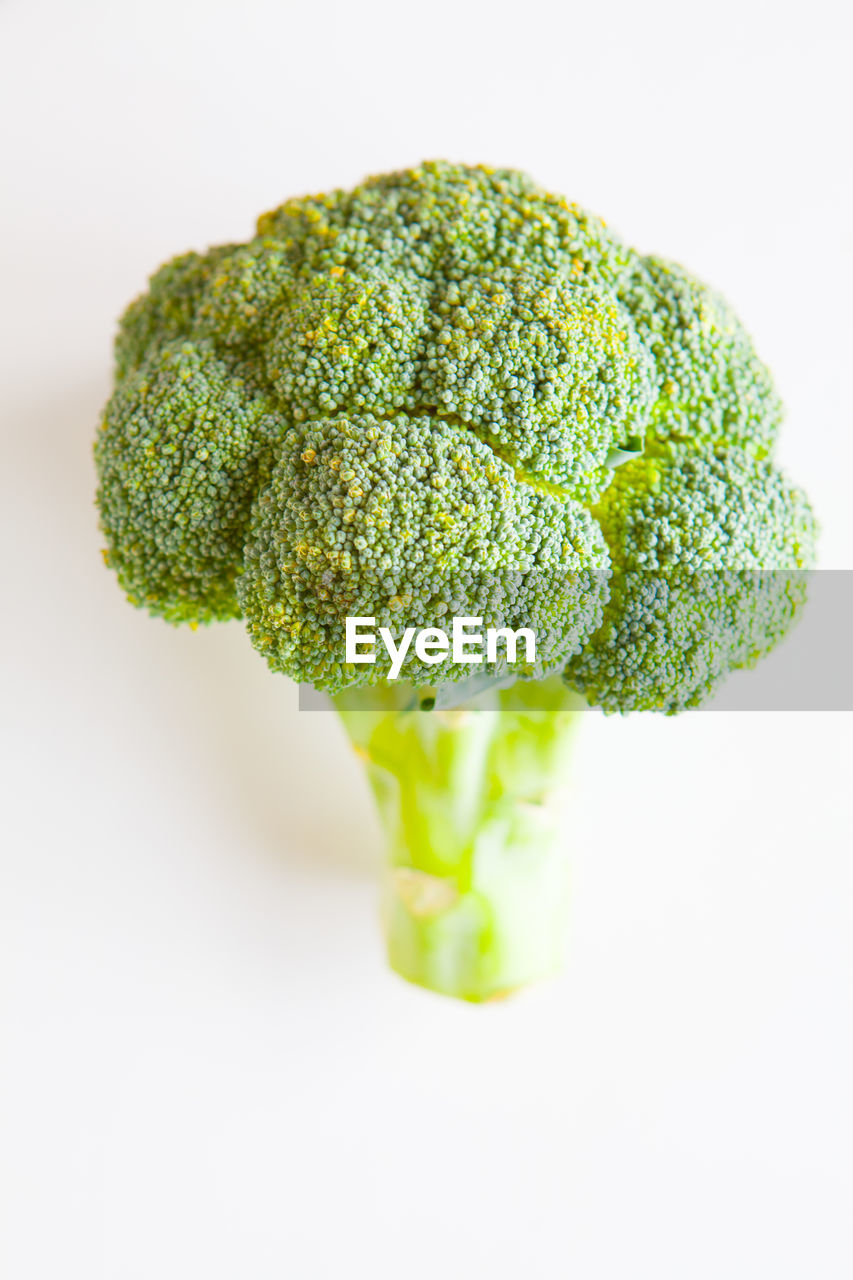 green color, studio shot, vegetable, healthy eating, indoors, food and drink, freshness, white background, food, broccoli, close-up, wellbeing, still life, no people, green, cut out, single object, raw food, focus on foreground, high angle view