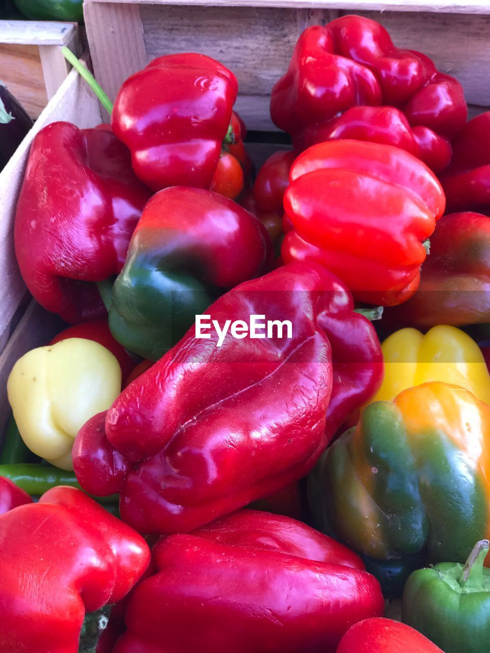 food and drink, pepper, food, vegetable, bell pepper, freshness, red, healthy eating, red bell pepper, wellbeing, still life, close-up, large group of objects, no people, indoors, abundance, for sale, raw food, choice, yellow bell pepper, paprika