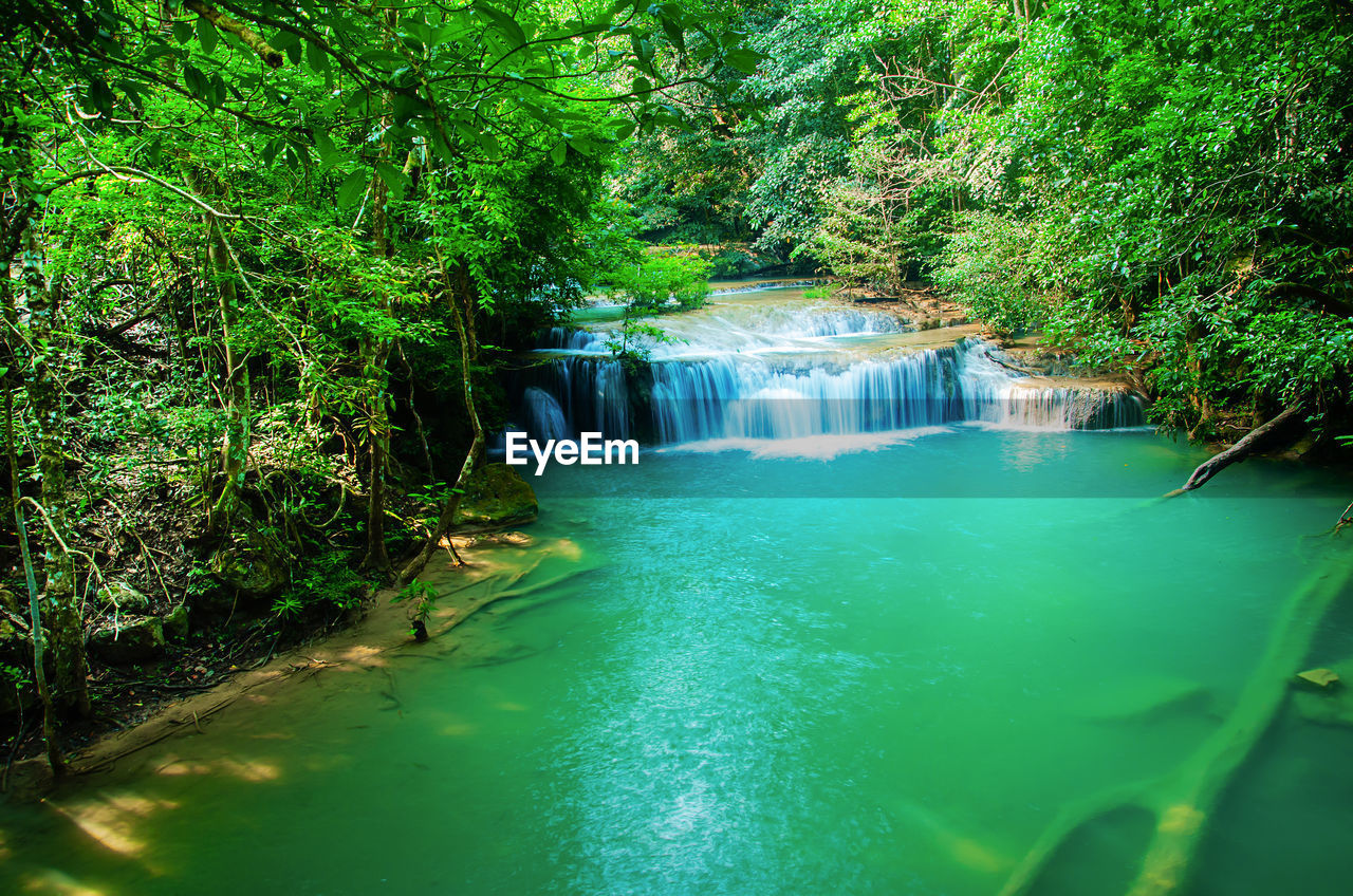 water, plant, forest, tree, waterfall, scenics - nature, beauty in nature, flowing water, motion, green color, nature, long exposure, river, growth, no people, land, lush foliage, foliage, day, flowing, rainforest, outdoors, power in nature
