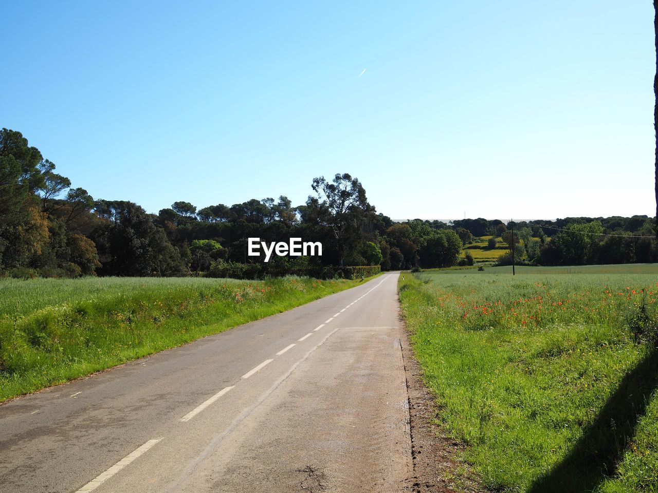 Empty road amidst field against clear sky