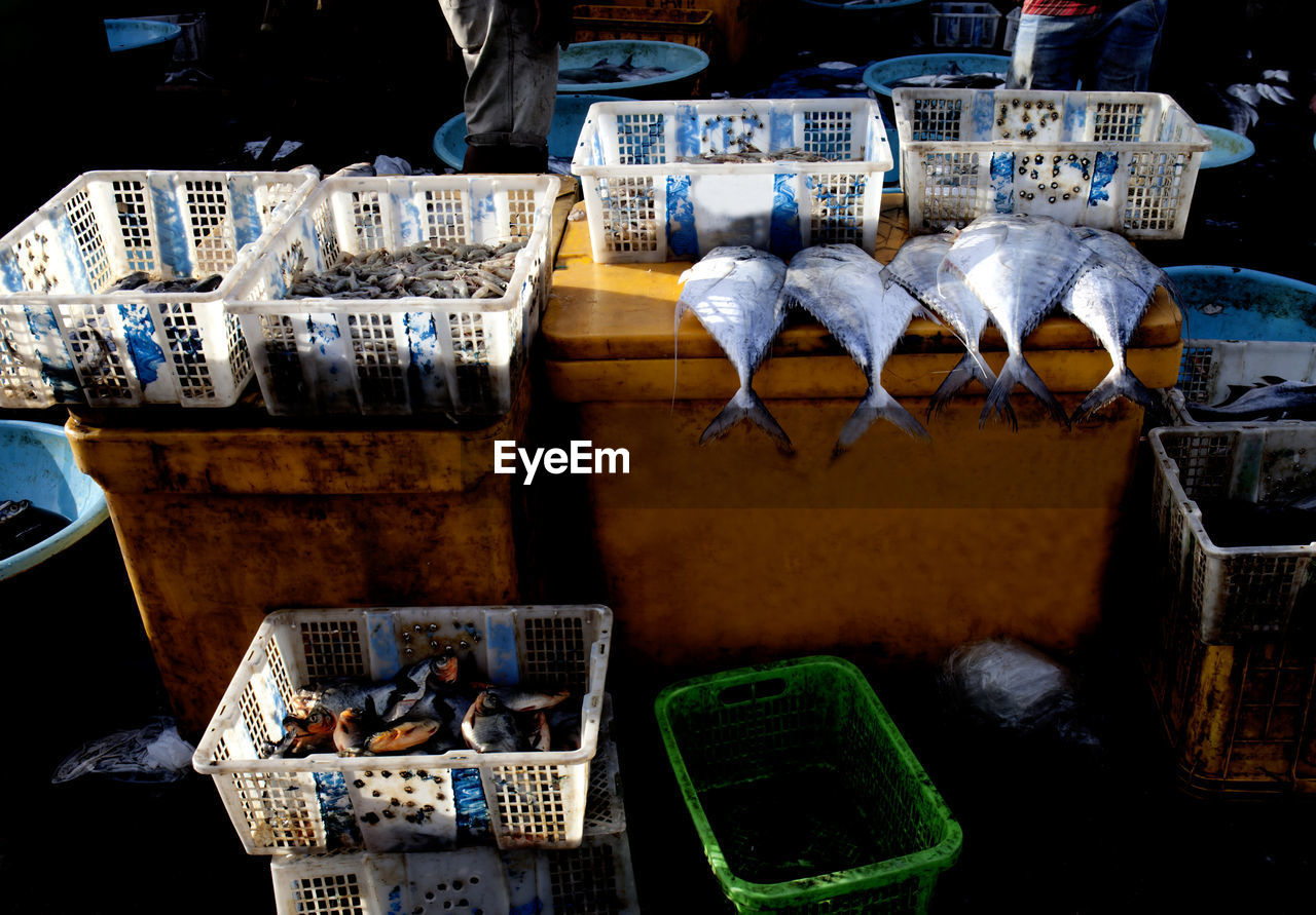 Fish For Sale In Indonesia