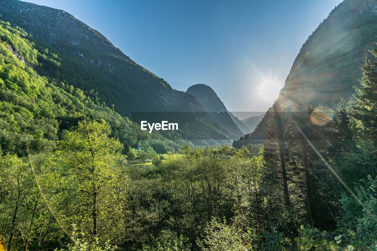 mountain, beauty in nature, sky, tranquility, plant, tranquil scene, tree, scenics - nature, nature, green color, environment, sunlight, landscape, no people, non-urban scene, idyllic, mountain range, growth, day, land, lens flare