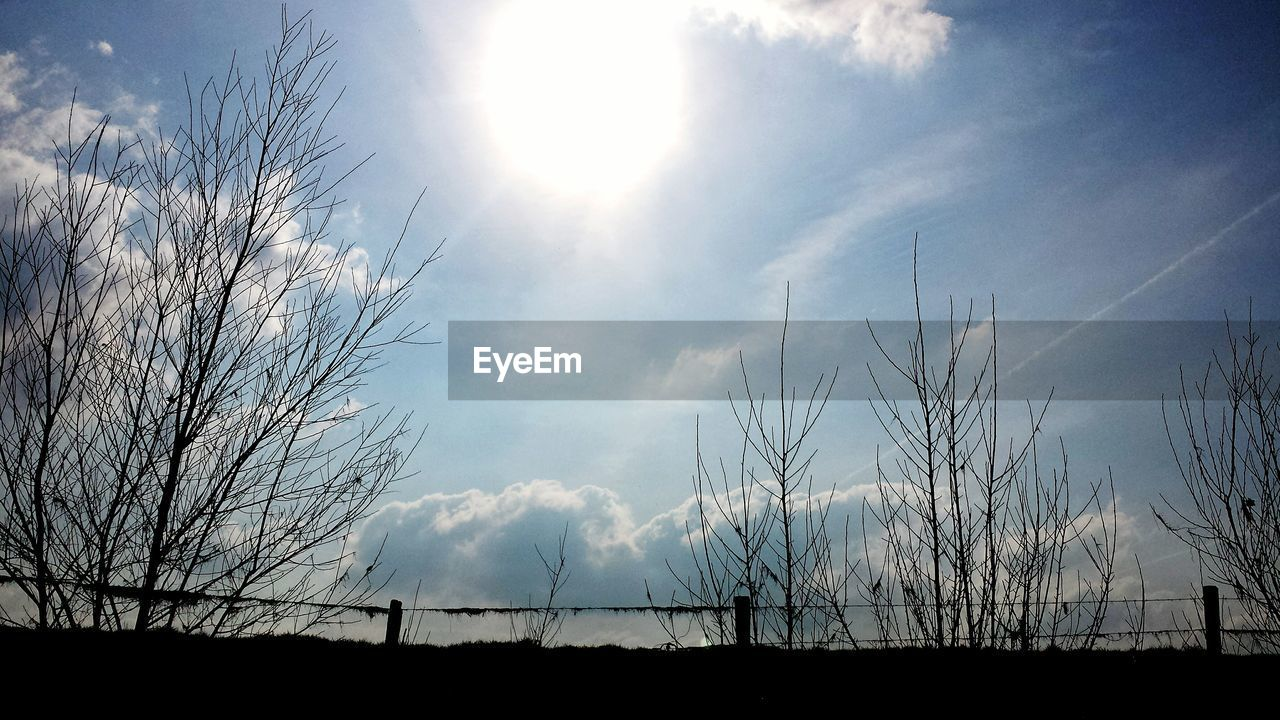 sky, nature, tranquil scene, tranquility, scenics, beauty in nature, no people, low angle view, sunlight, outdoors, day, landscape, sun, cloud - sky, field, silhouette, growth, rural scene, grass, tree, vapor trail