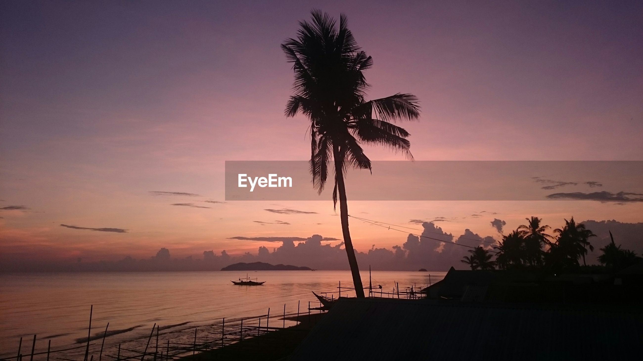 Low angle view of silhouette coconut palm tree by sea against sky at dusk
