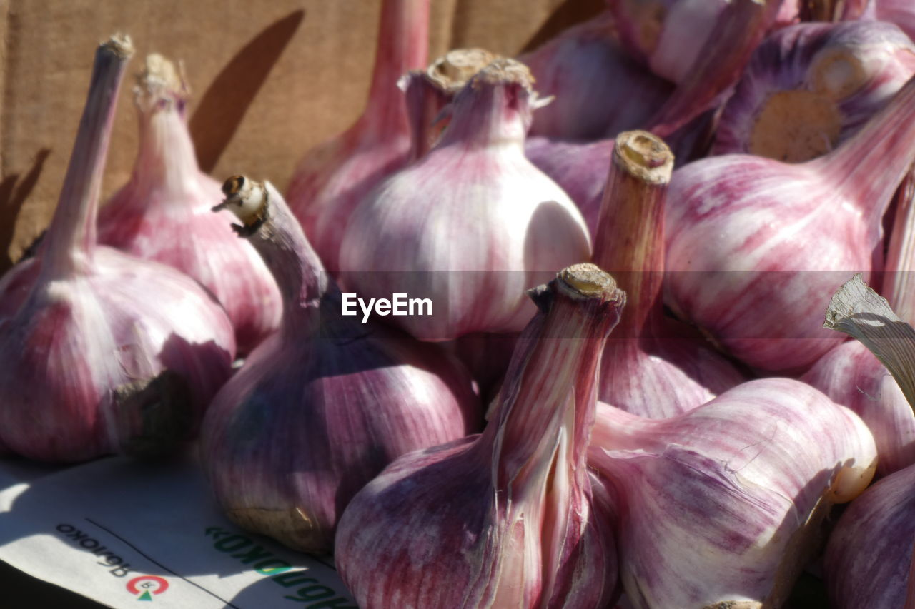 food and drink, food, vegetable, still life, freshness, healthy eating, wellbeing, raw food, no people, close-up, market, pink color, indoors, for sale, day, focus on foreground, business, retail, onion, ingredient