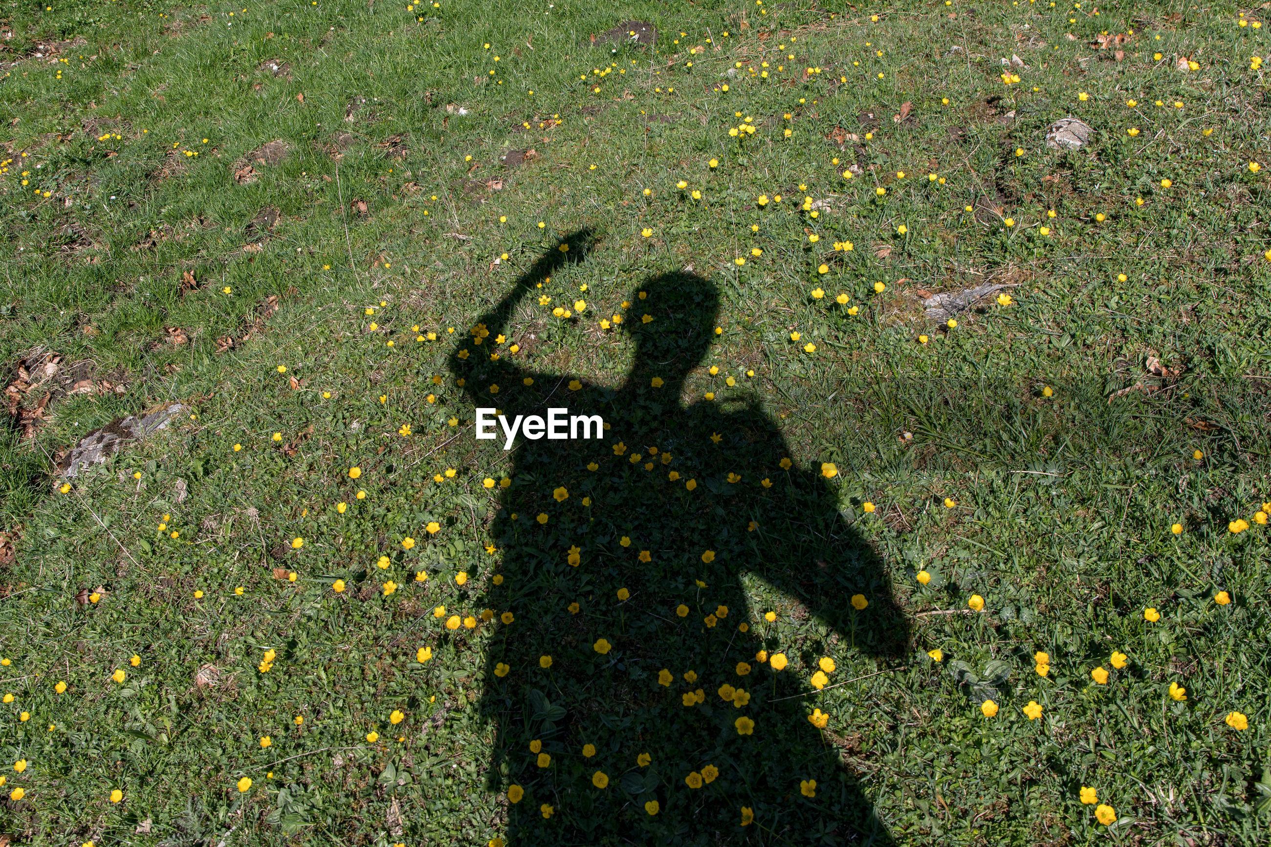 Shadow of man on field