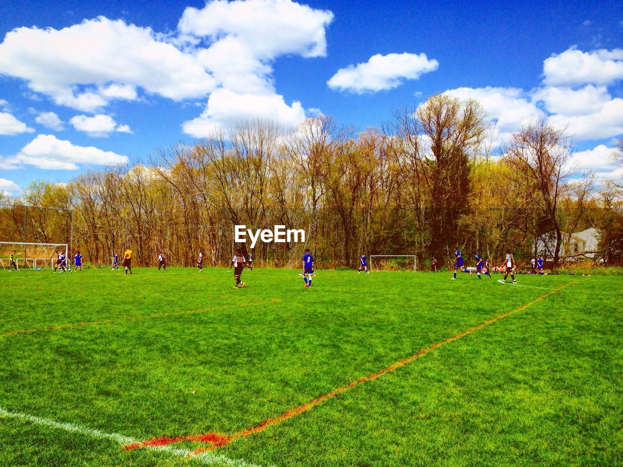 grass, cloud - sky, sky, field, real people, nature, green color, growth, tree, large group of people, outdoors, day, beauty in nature, landscape, men, leisure activity, scenics, women, lifestyles, playing field, sport, bare tree, togetherness, people