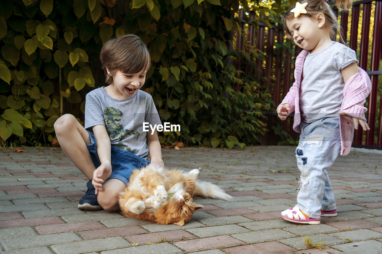 Happy and joyful boy and girl playing with there pet - red cat.