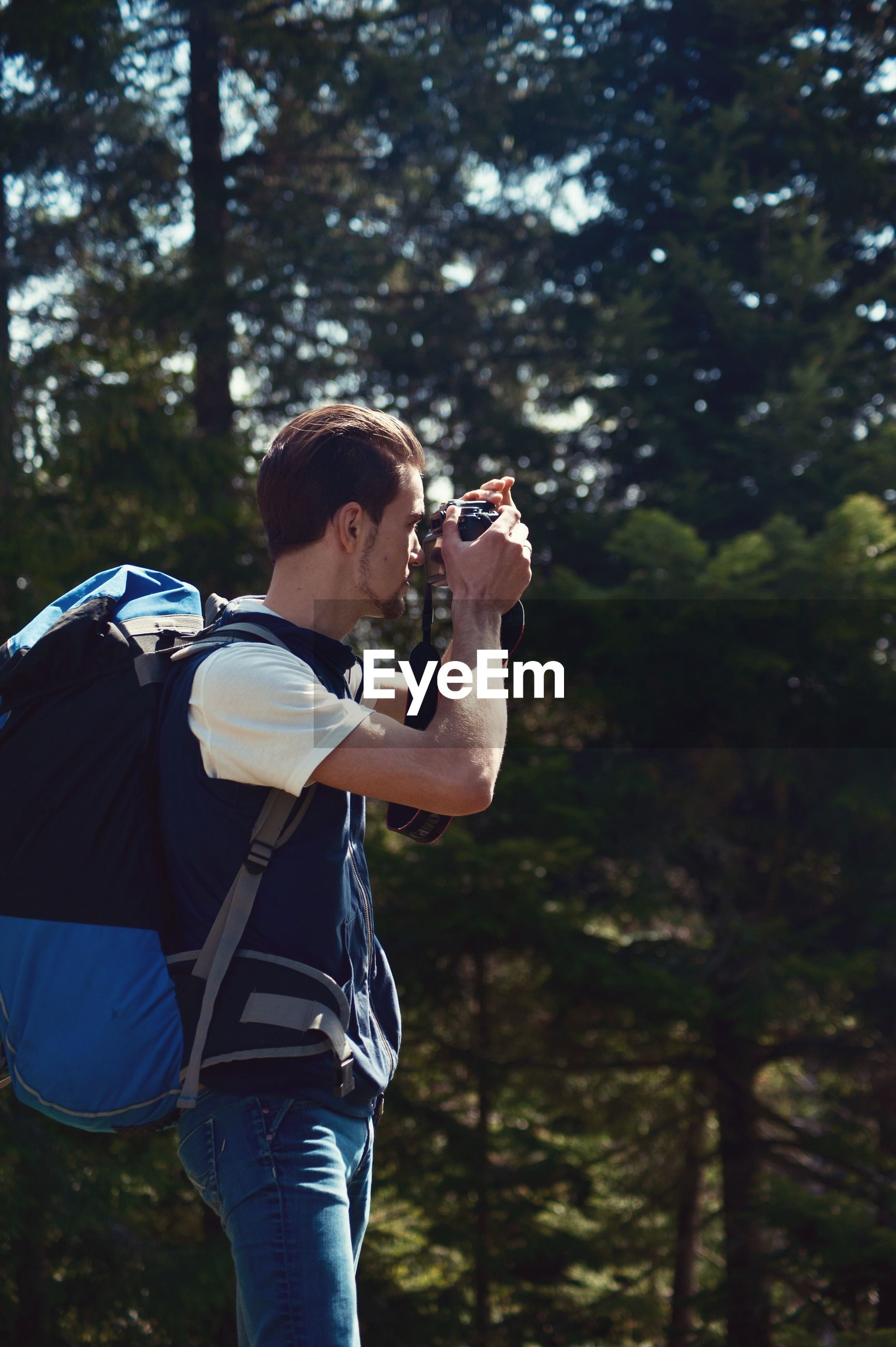 Man photographing while standing in forest