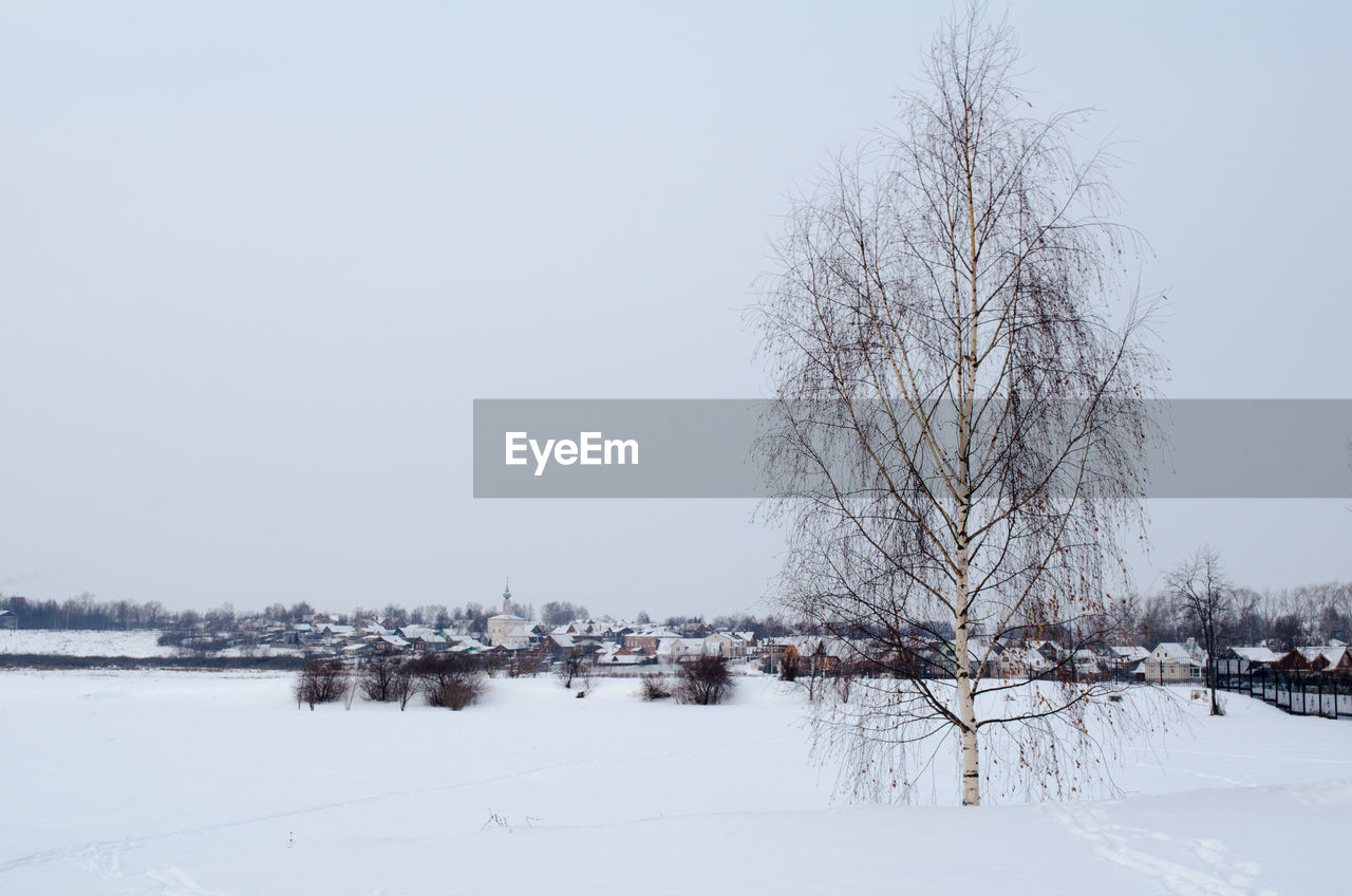 winter, cold temperature, snow, nature, clear sky, bare tree, beauty in nature, outdoors, tranquility, landscape, frozen, scenics, tree, day, no people, sky