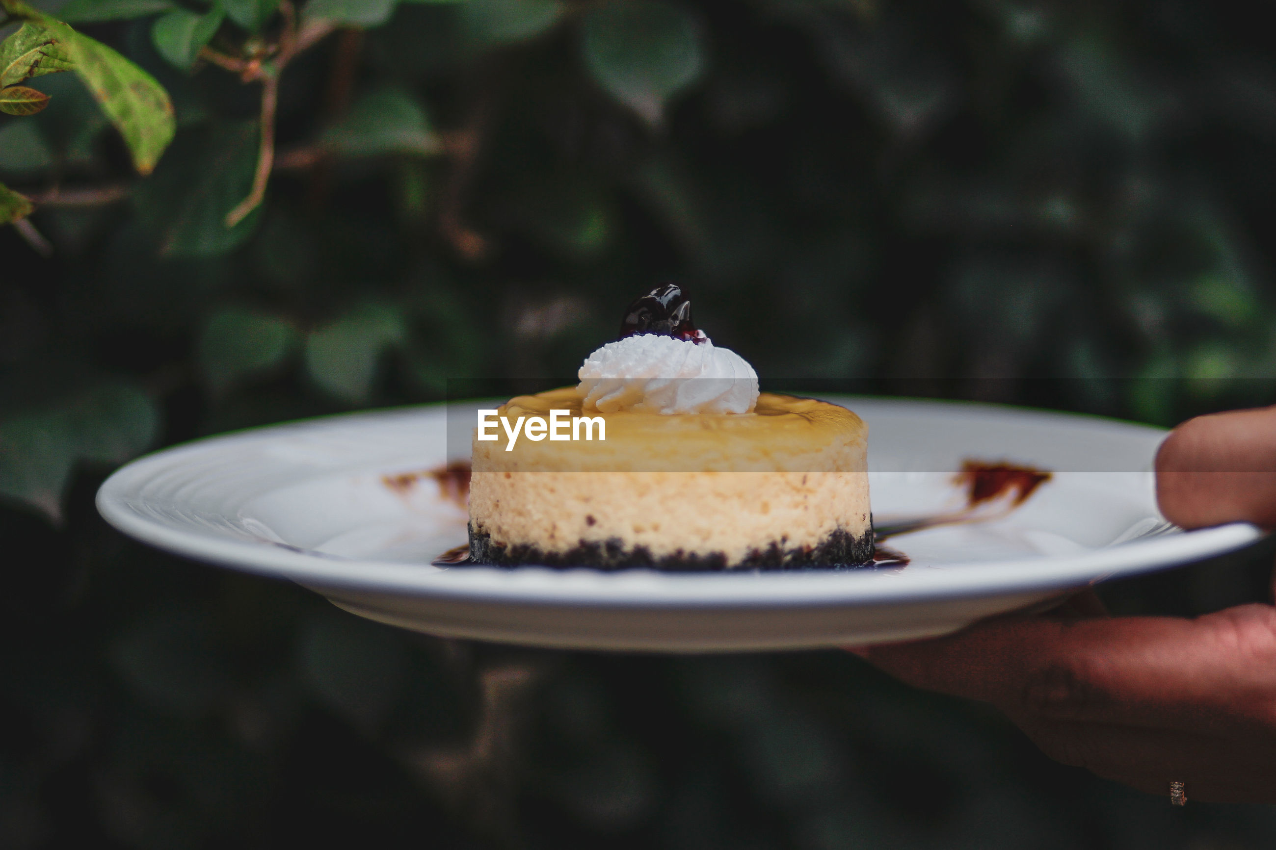 Cropped image of hand holding dessert in plate