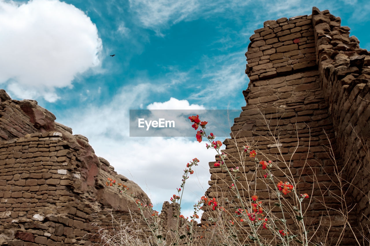 cloud - sky, sky, built structure, architecture, building exterior, nature, low angle view, history, the past, day, building, no people, solid, rock, outdoors, rock - object, beauty in nature, wall, plant, mountain, stone wall, brick