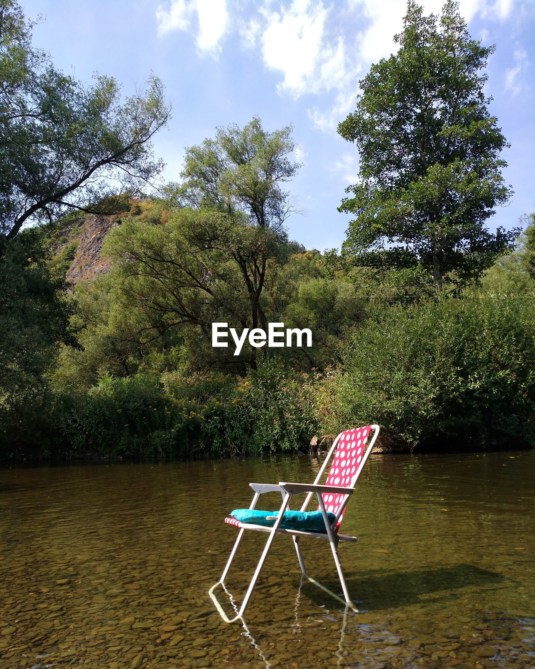 Empty chair in lake by trees